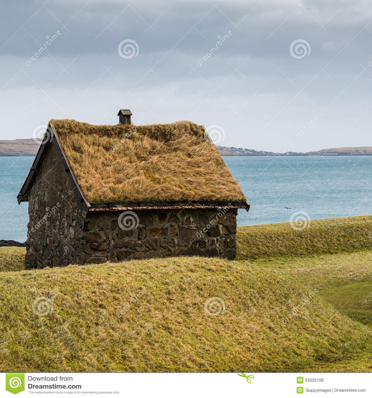 Grass Hut: Traditional Hut With A Green Grass Roof