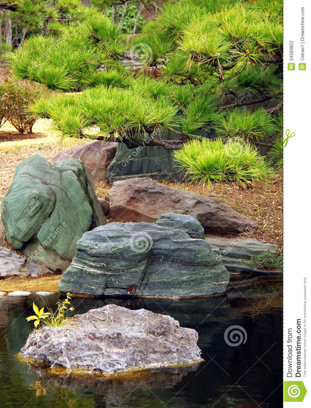 Traditional Japanese Garden Stock Photo Image 34589852