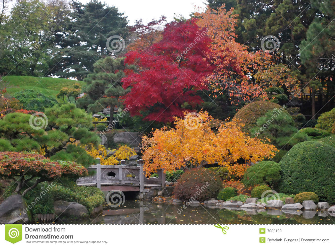 Traditional japanese garden landscape royalty free stock for Traditional japanese garden
