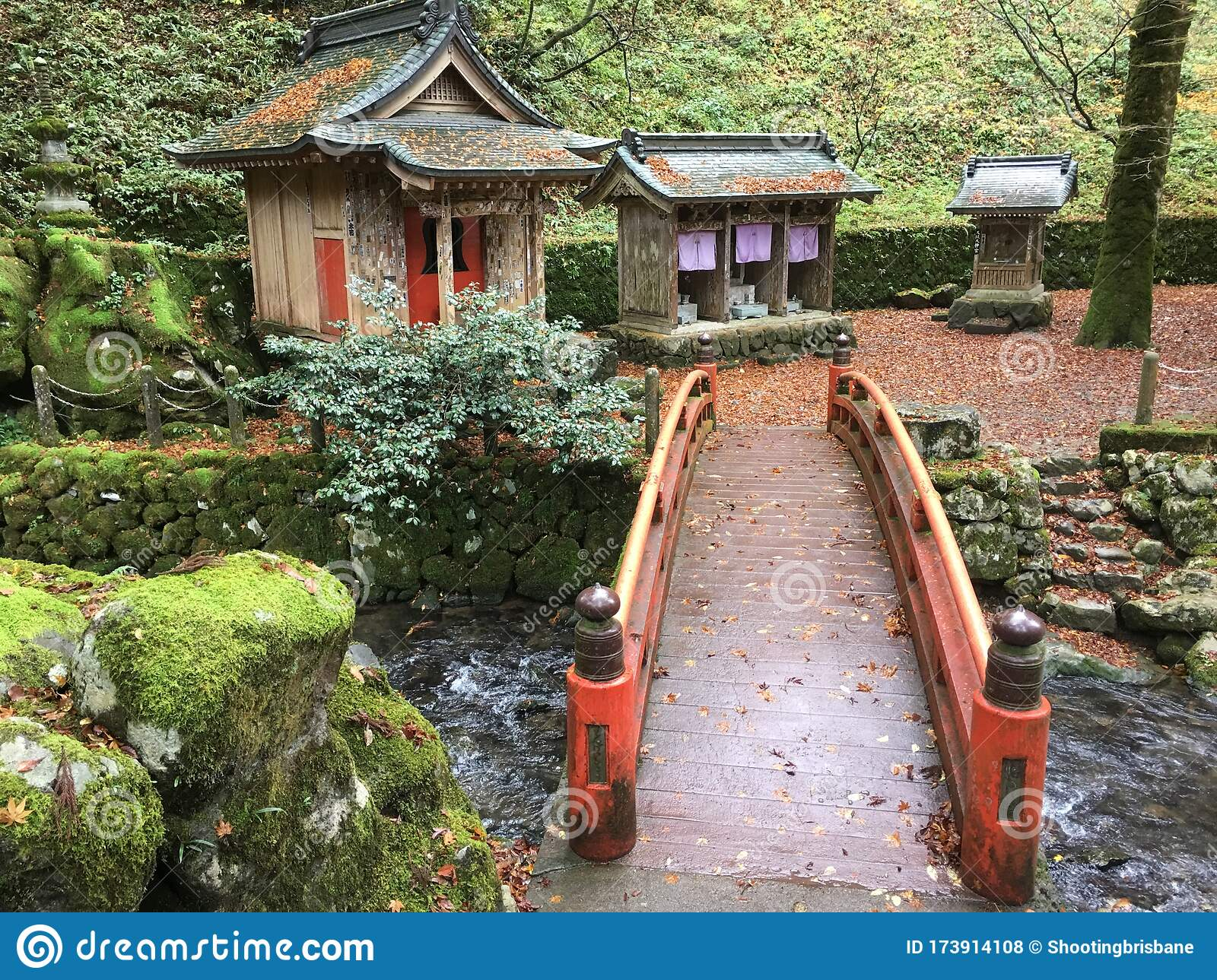Traditional Japanese Garden At Temple Stock Photo Image Of
