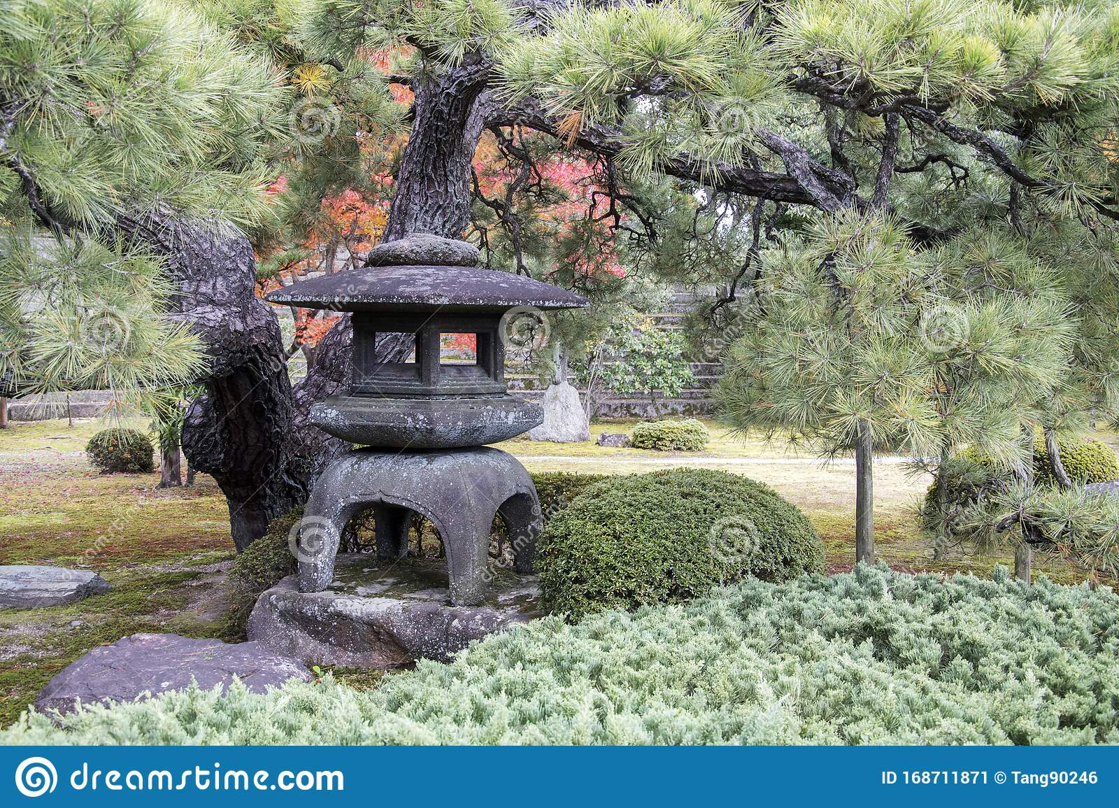 Traditional Lantern Made Of Stone In Japanese Garden Of Nijo Castle In Kyoto Stock Image Image Of Beautiful Lawn 168711871