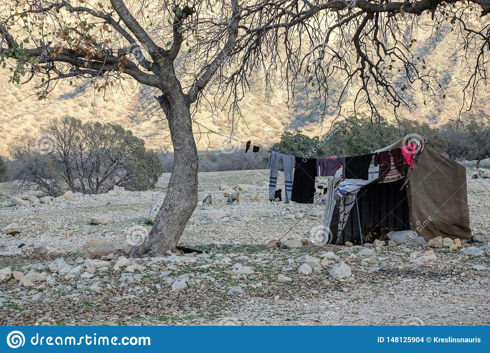 Nomads tent in Zagros mountains Iran