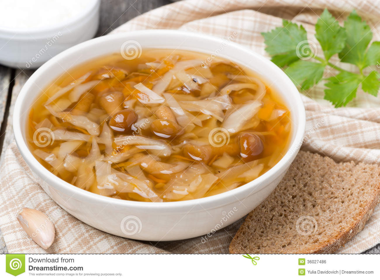 Traditional Russian cabbage soup (shchi) with wild mushrooms, top view ...