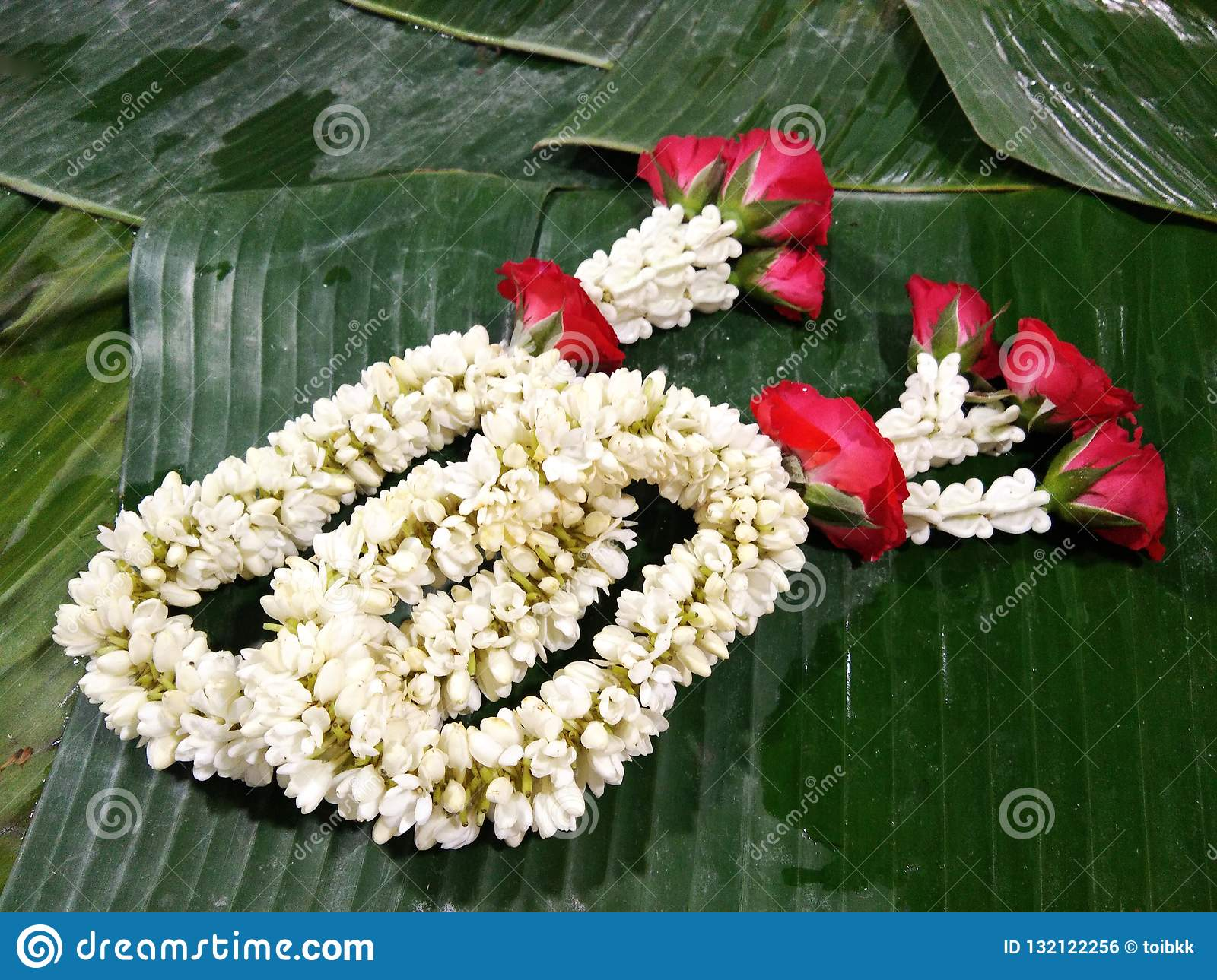 Traditional Thai garland of white blossom Psilanthus bengalensis and red rose flowers