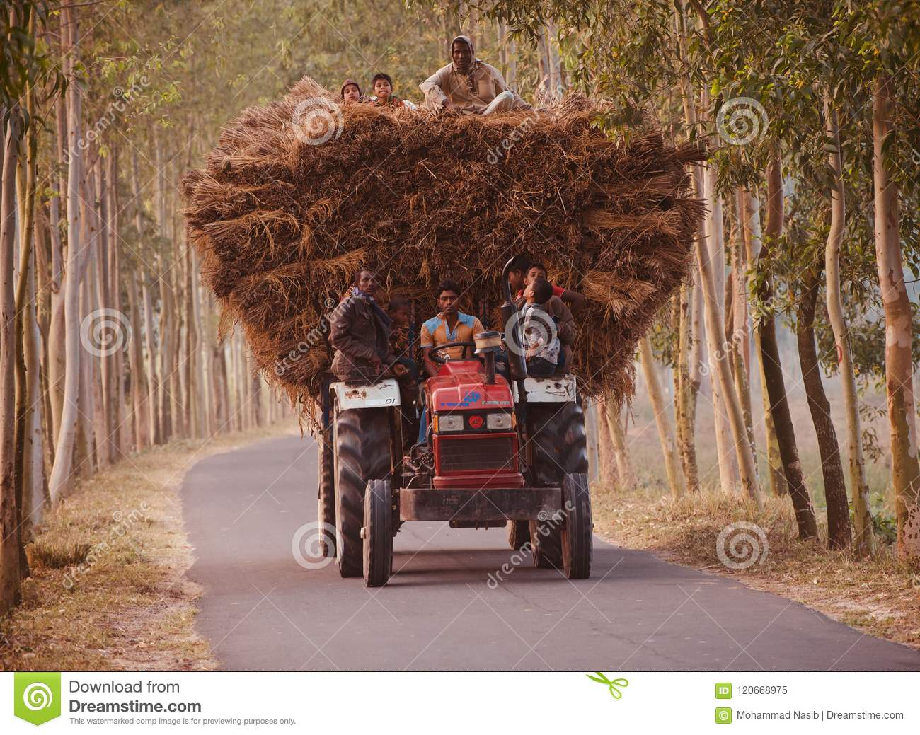 Download Traditional Tractor Vehicles With Passengers Running In An Urban Road Of Bangladesh Editorial Image - Image of moving, labor: 120668975