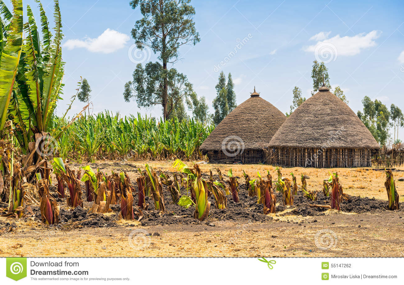 Traditional Village Houses In Ethiopia Stock Photo - Image ... Poor African Villages