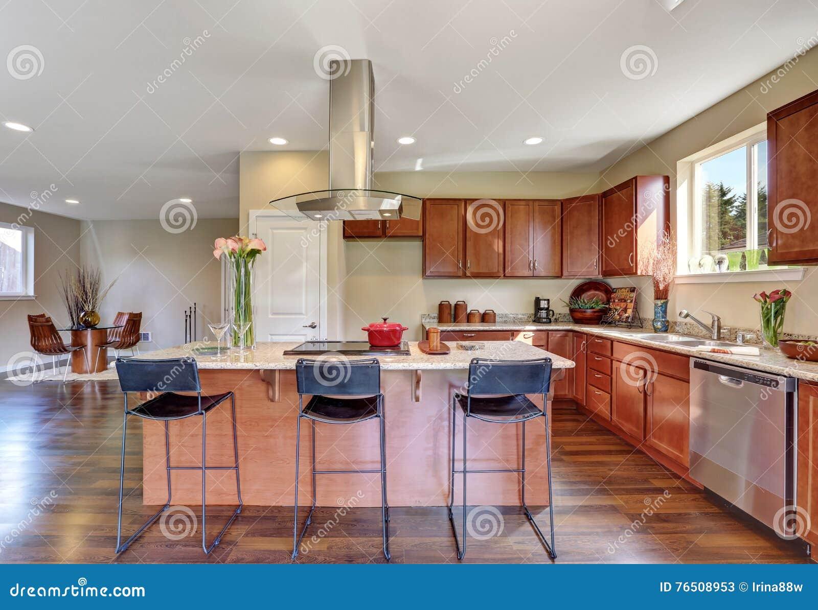 Traditionele amerikaanse keuken die roestvrij staaltoestellen