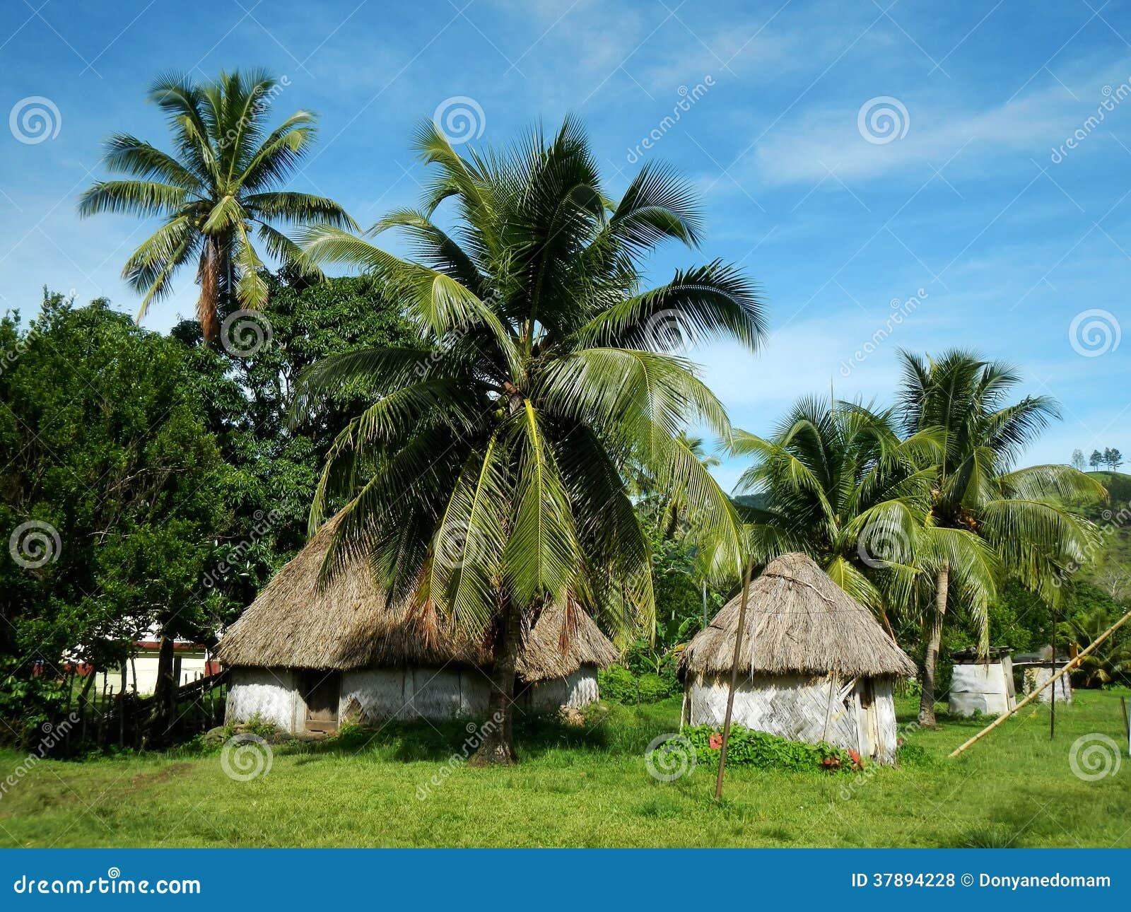 Traditionele huizen van Navala-dorp, Viti Levu, Fiji