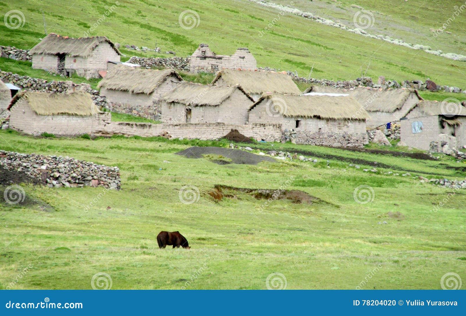 Traditionele quechua steenhuizen