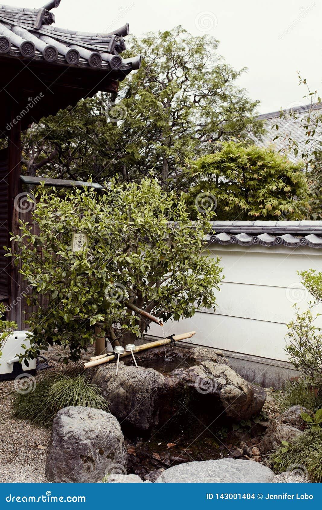 Traditionell japansk trädgård i det Byodoin komplexet