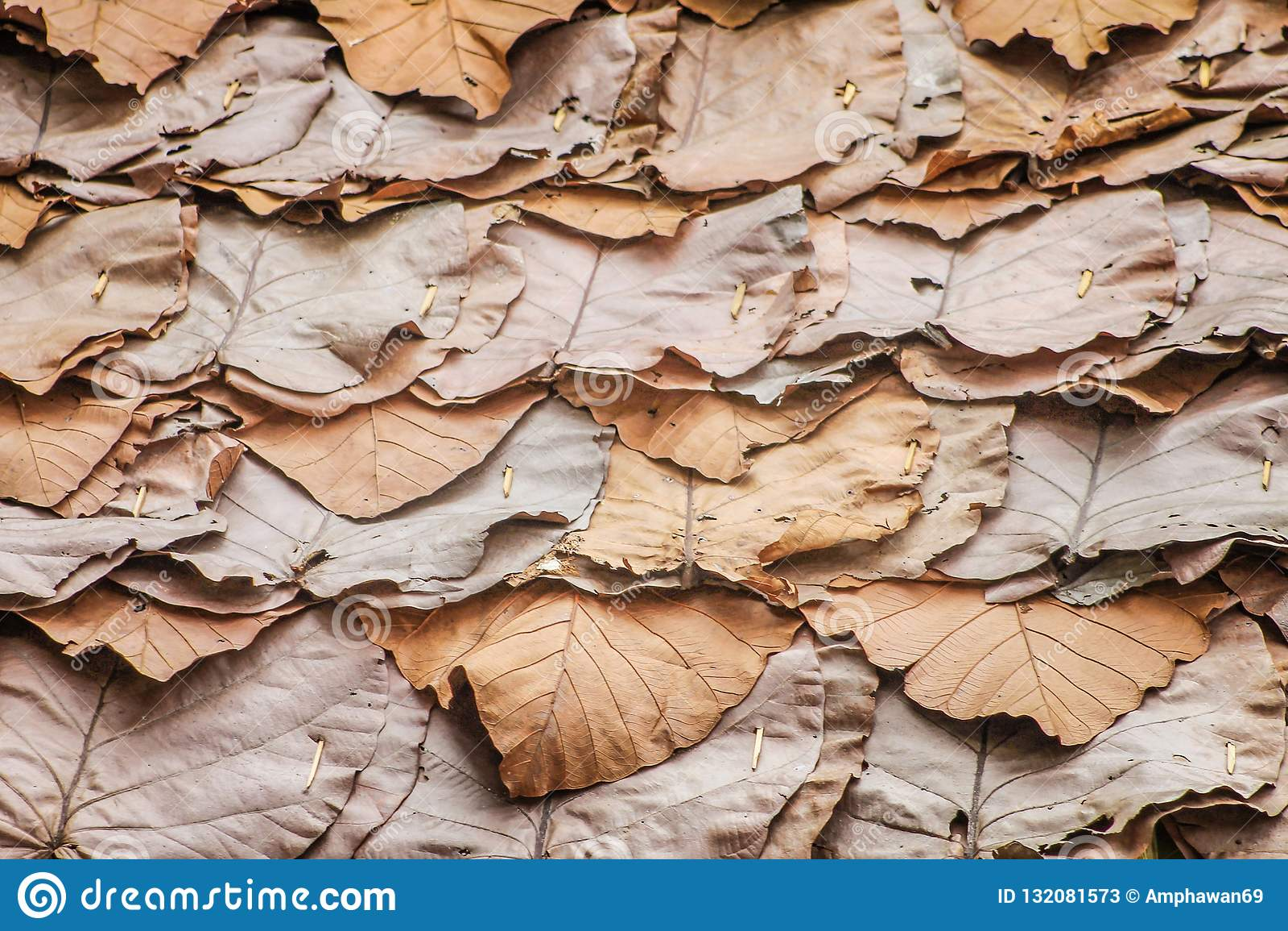 Traditionelle thailändische Muster der Schicht trockneten Blattdachbeschaffenheit, Naturhintergrund