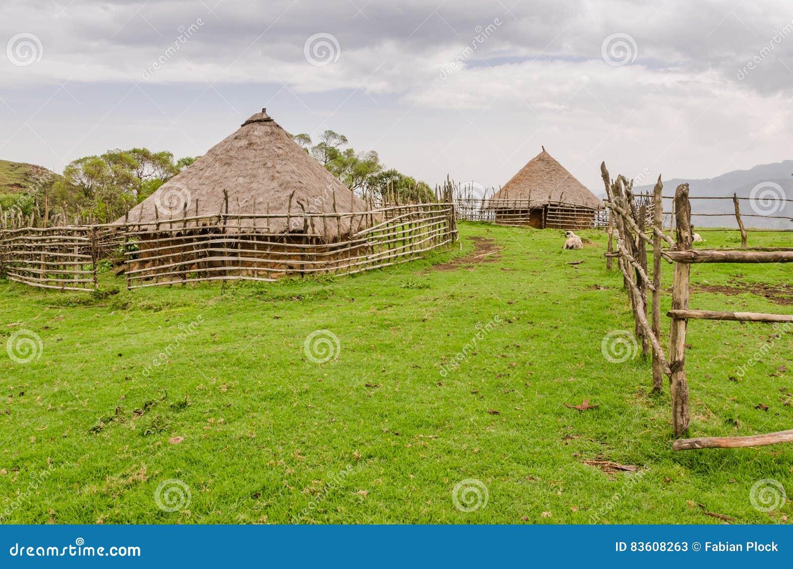 Traditionellt halmtäcka, lera och wood hus av fårbonden i högländer av Kamerun, Afrika