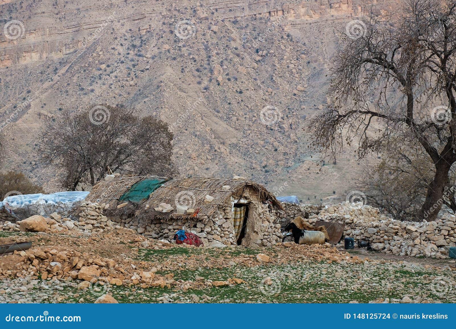 Traditionell Nomadmaträtt I Zagros Berg Arkivfoto Bild av