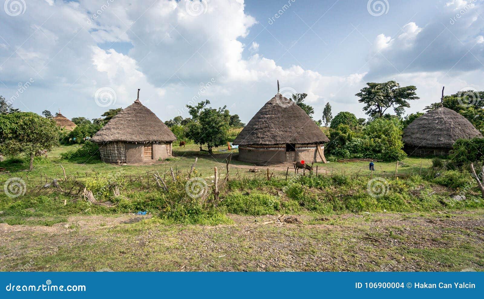 Tradycyjne słomiane budy w Omo dolinie Etiopia