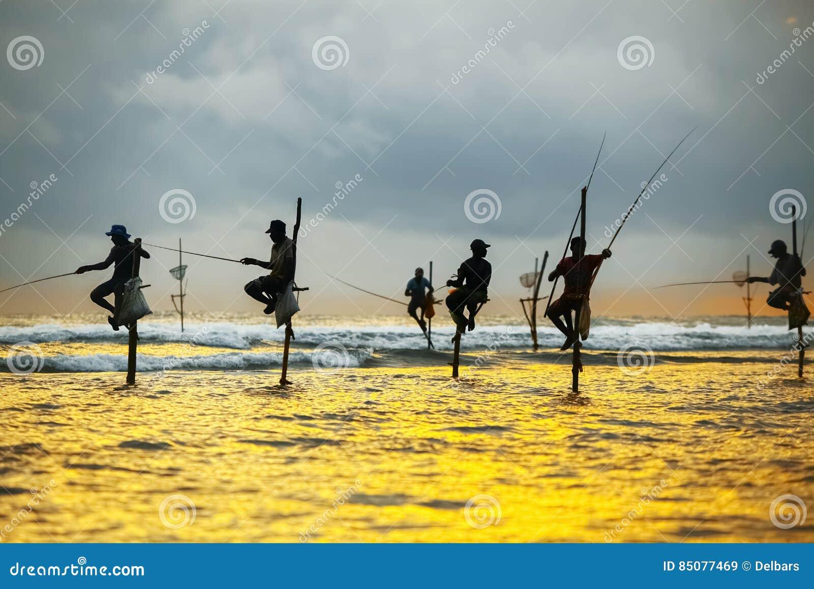 Tradycyjni rybacy na kijach przy zmierzchem w Sri Lanka