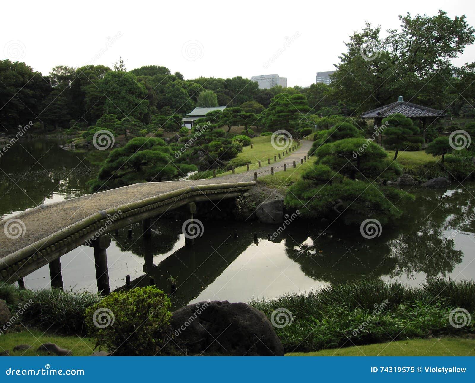 Tradycyjny Japoński przespacerowanie ogród z mostem przez staw