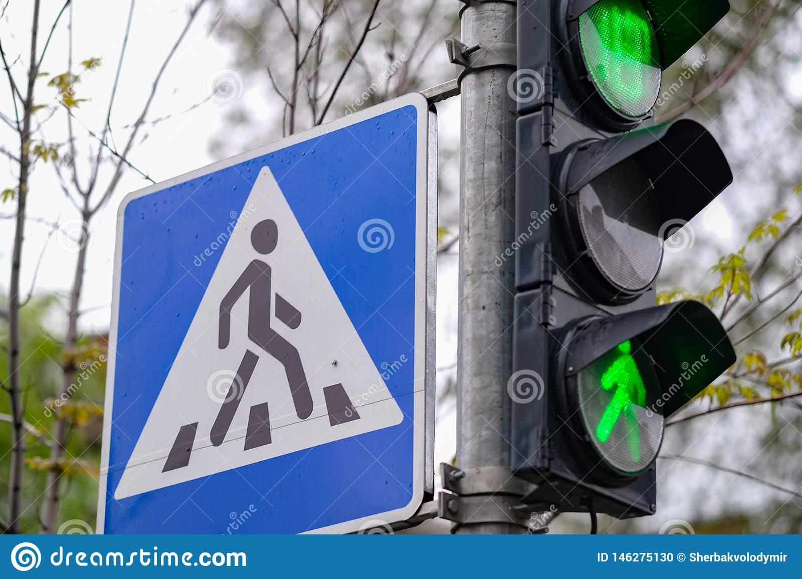 Traffic lights. green color and pedestrian crossing sign in a city