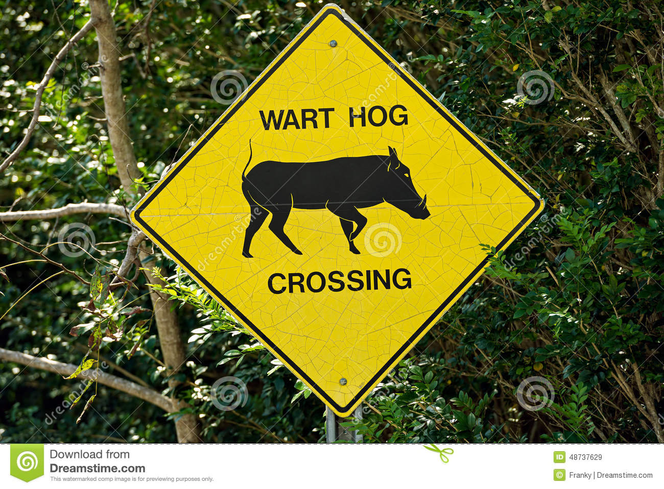 Traffic sign wart hog crossing