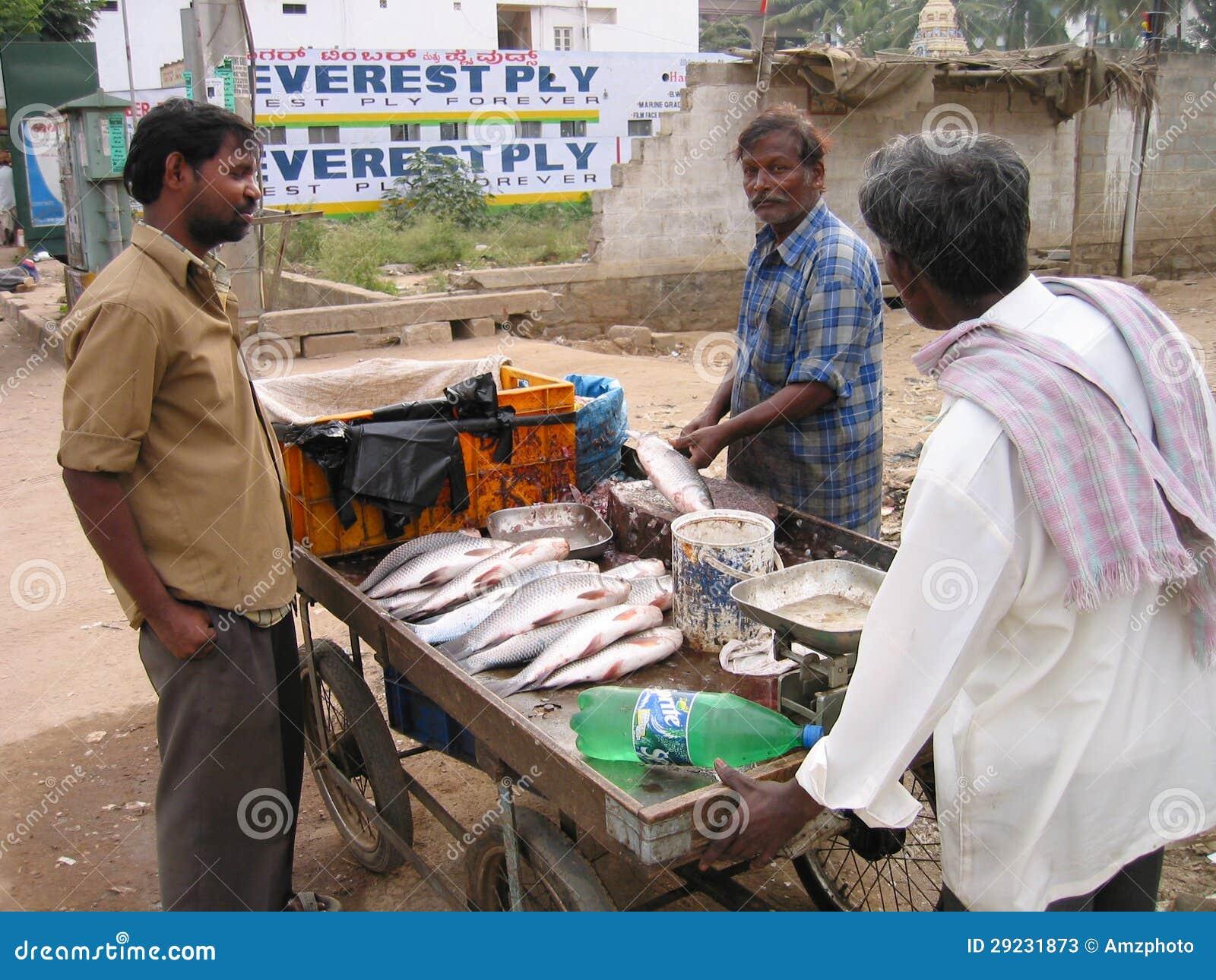 Download Traficante De Peixes Indiano Foto de Stock Editorial - Imagem de tornar, pobreza: 29231873