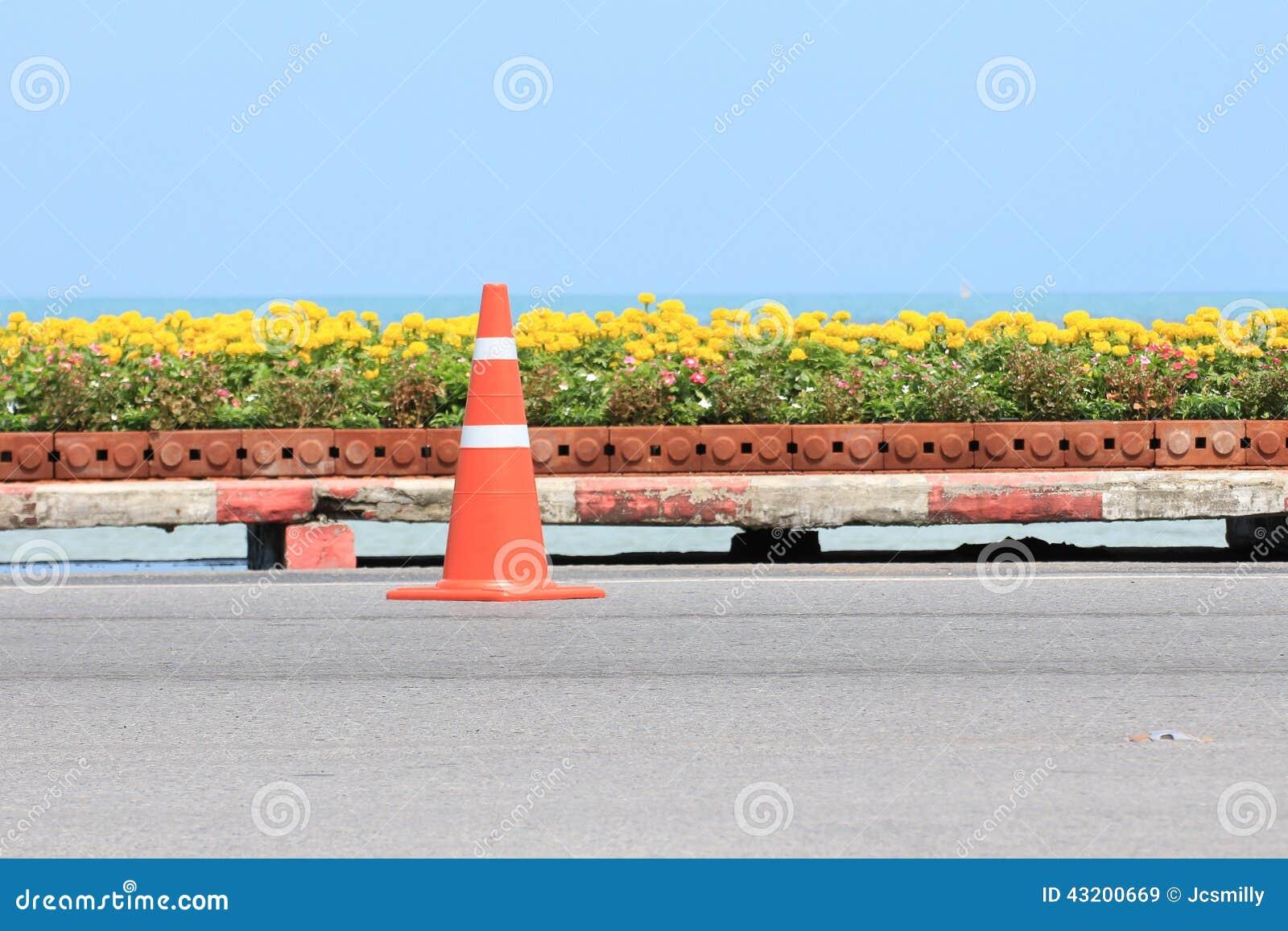 Download Trafikera Kotten På Vägen Med Blomman Och Seascape Som Bakgrund Fotografering för Bildbyråer - Bild av isolerat, seascape: 43200669