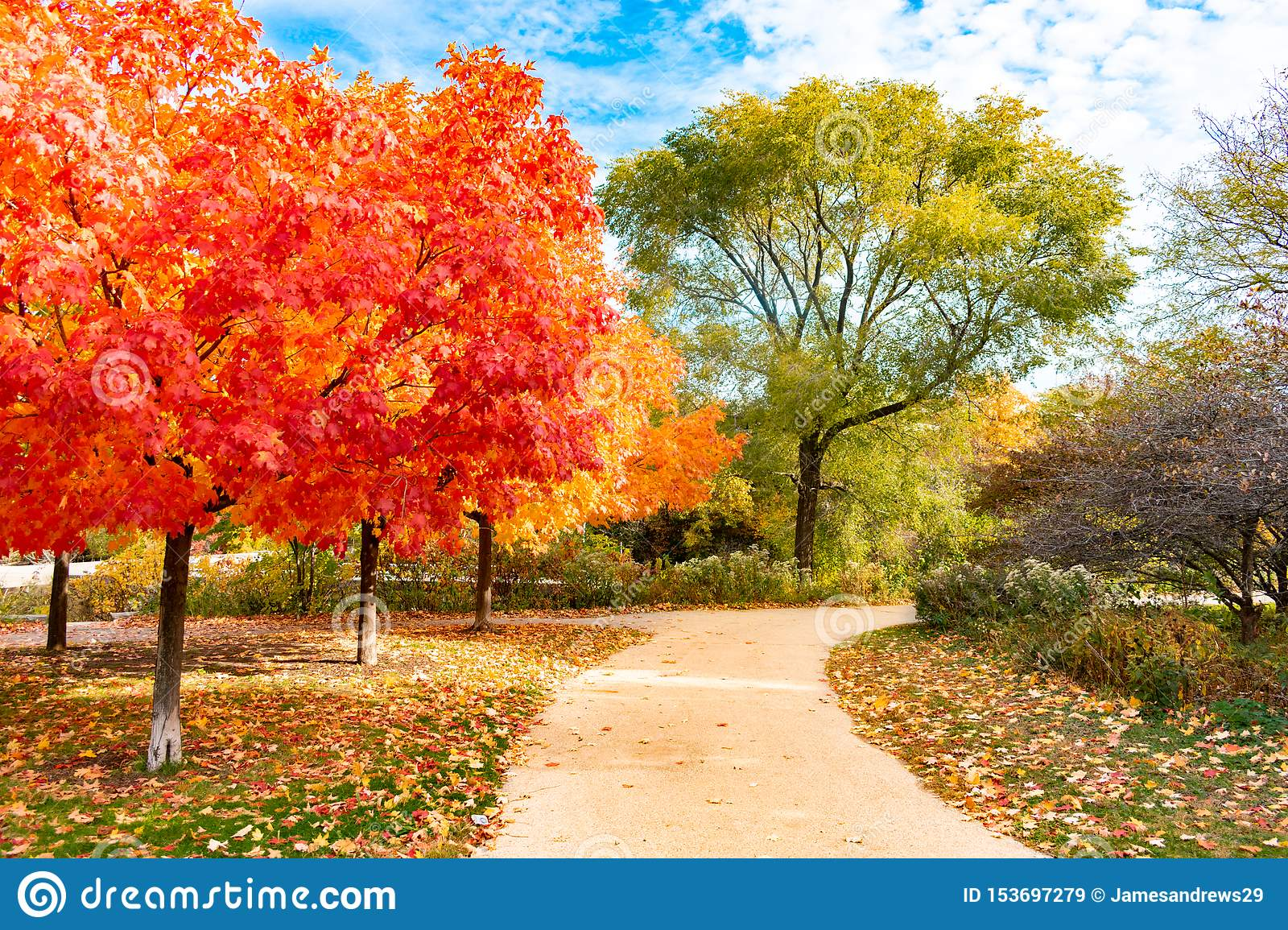 Colorful Autumn Trail near North Pond in Lincoln Park Chicago