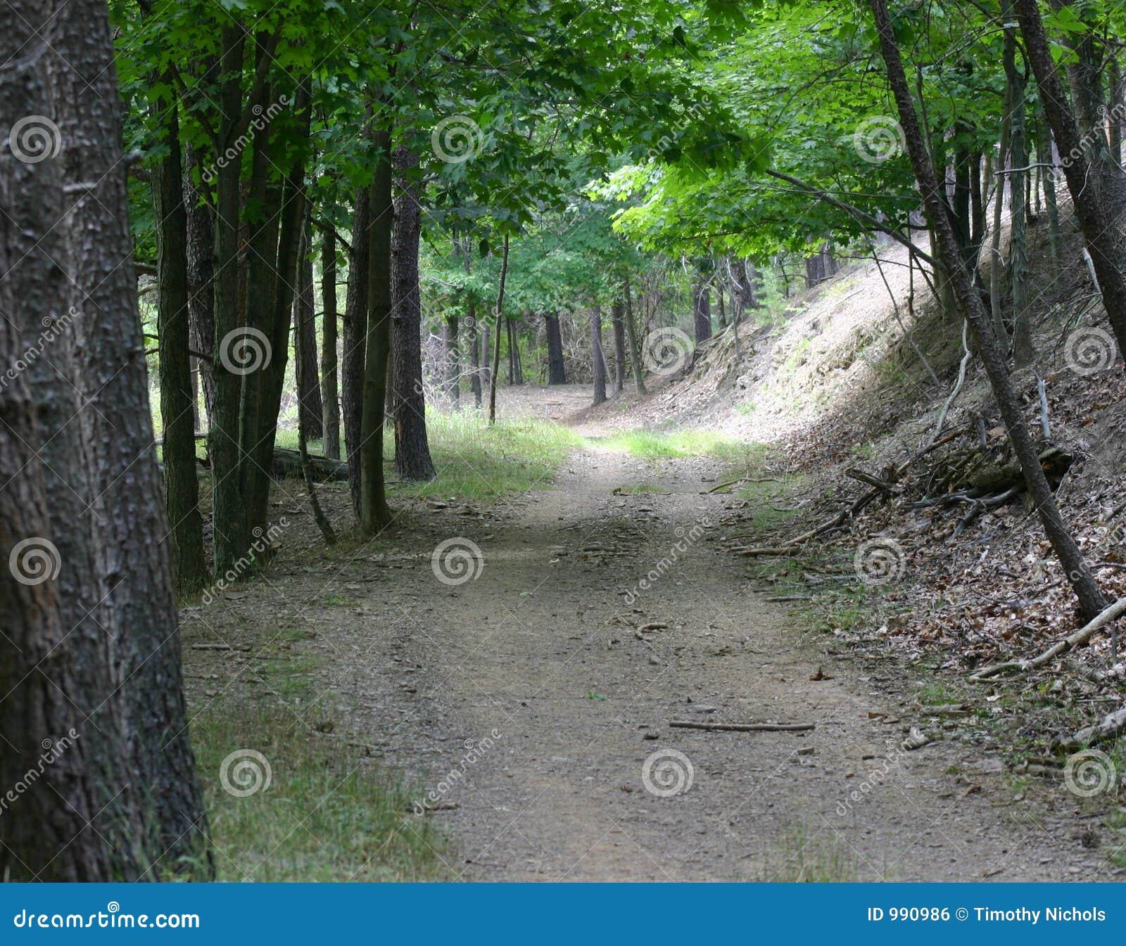 Trail för skogbergbana