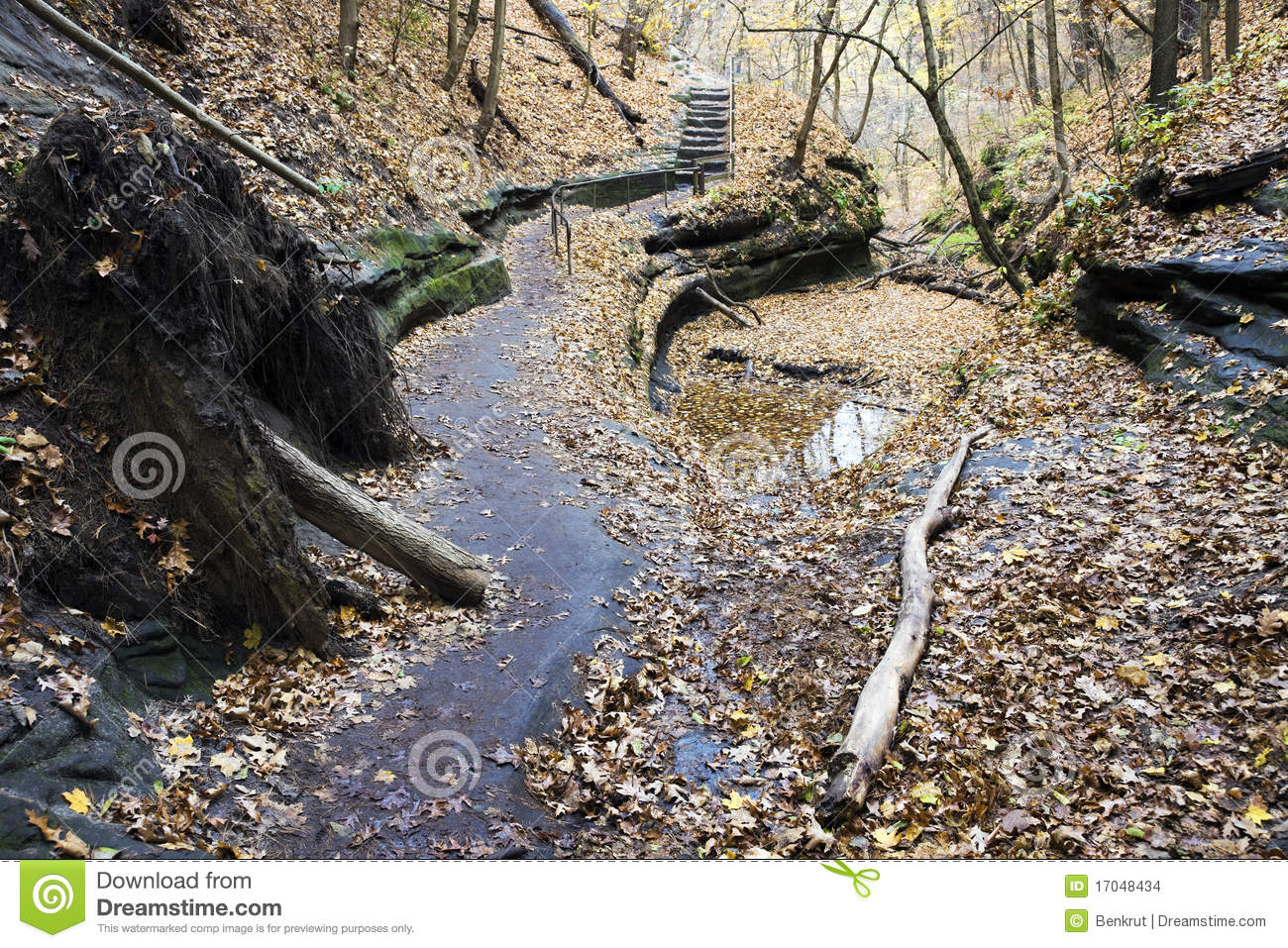 Trail In Starved Rock State Park Stock Photo - Image of rock, utica ...