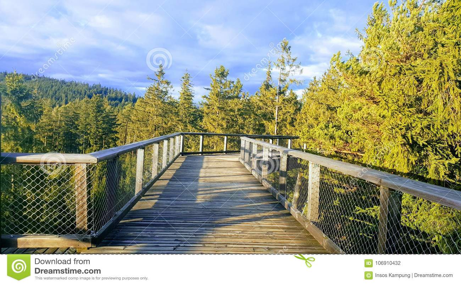 The Trail Trees Lipno Lookout, Czechia