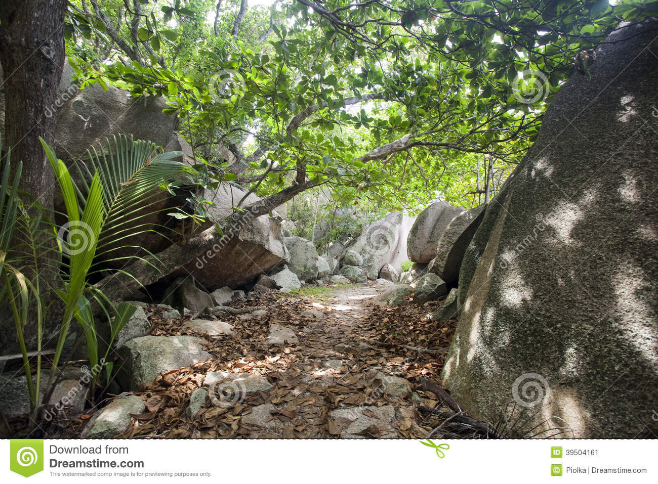 Trail way at Anse Source D Argent