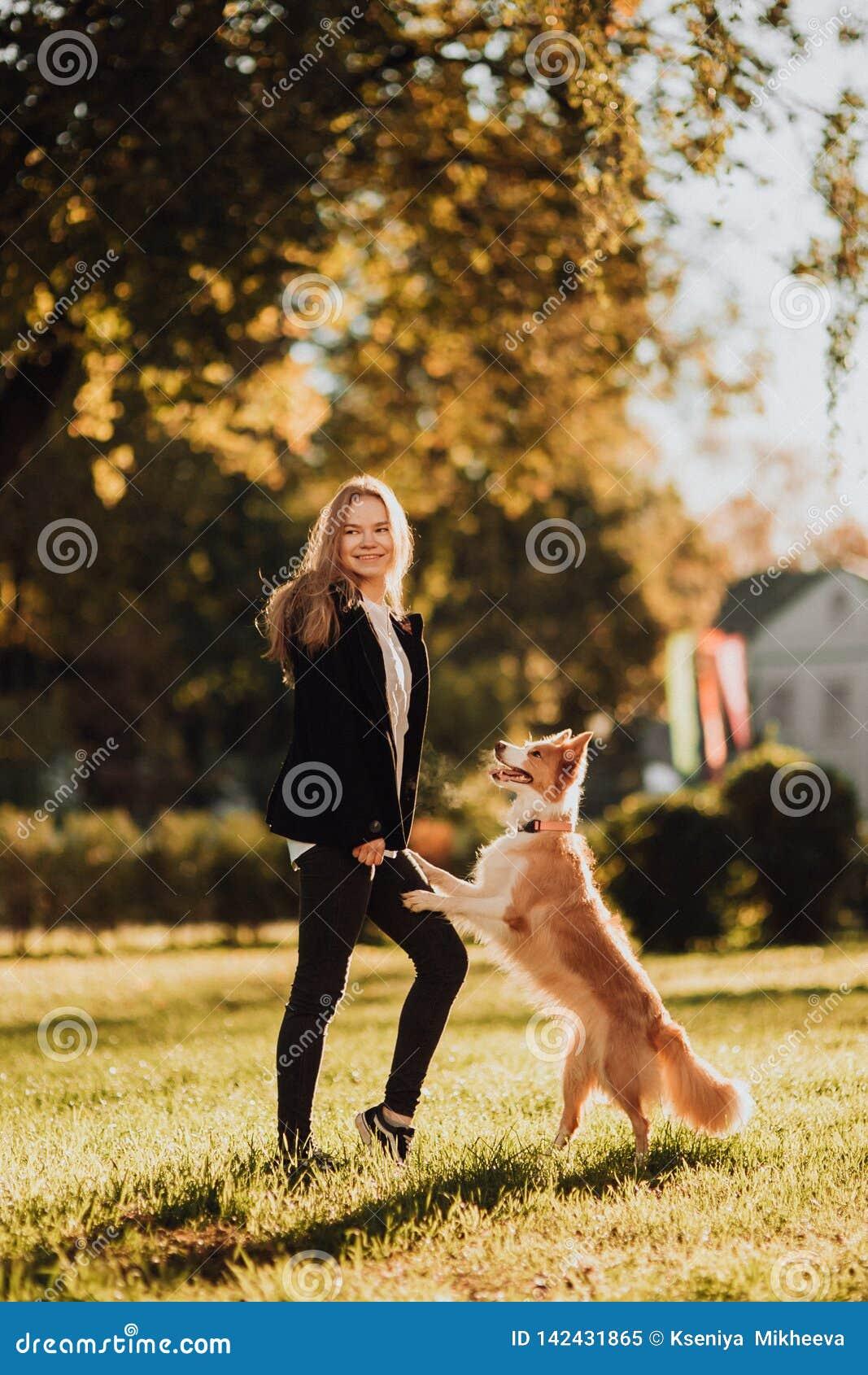 Train blond de fille son chien border collie en parc vert en soleil