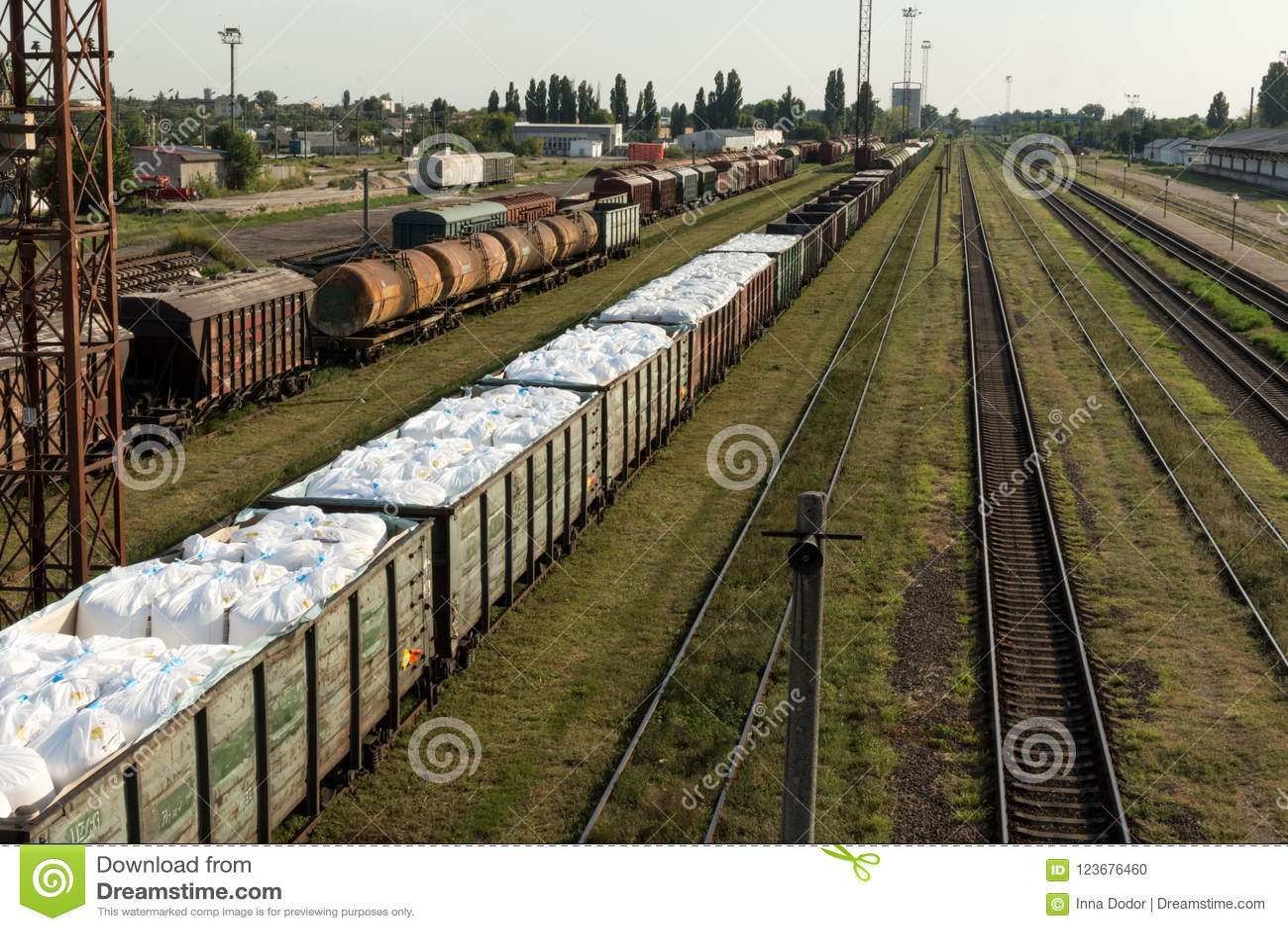 Train de cargaison Gare britannique