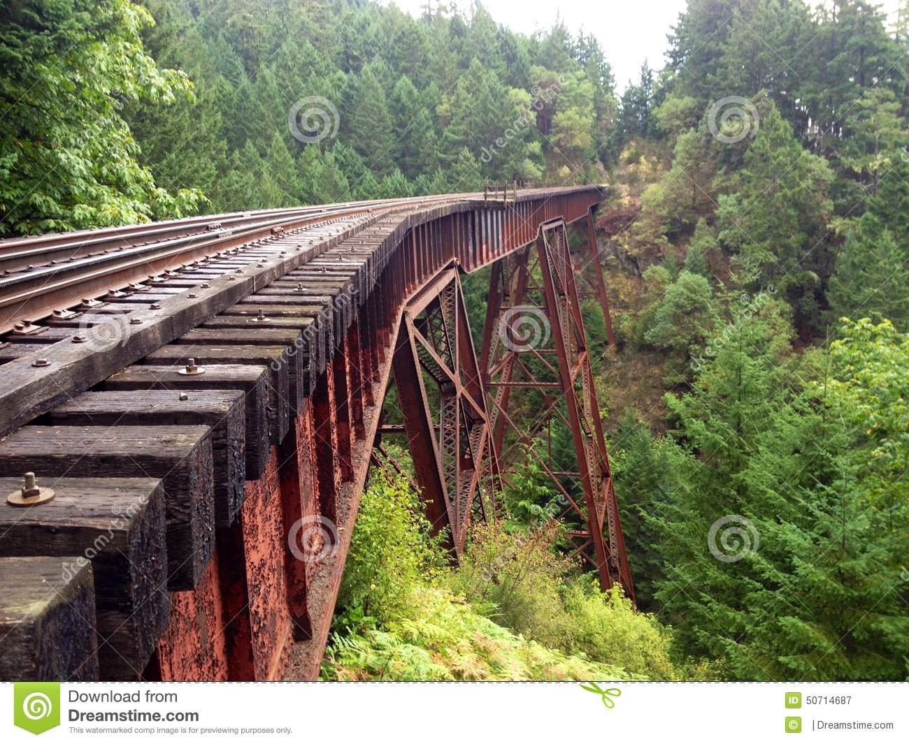 ... Or Train Bridge Or Trestle In The Forest Stock Photo - Image: 50714687