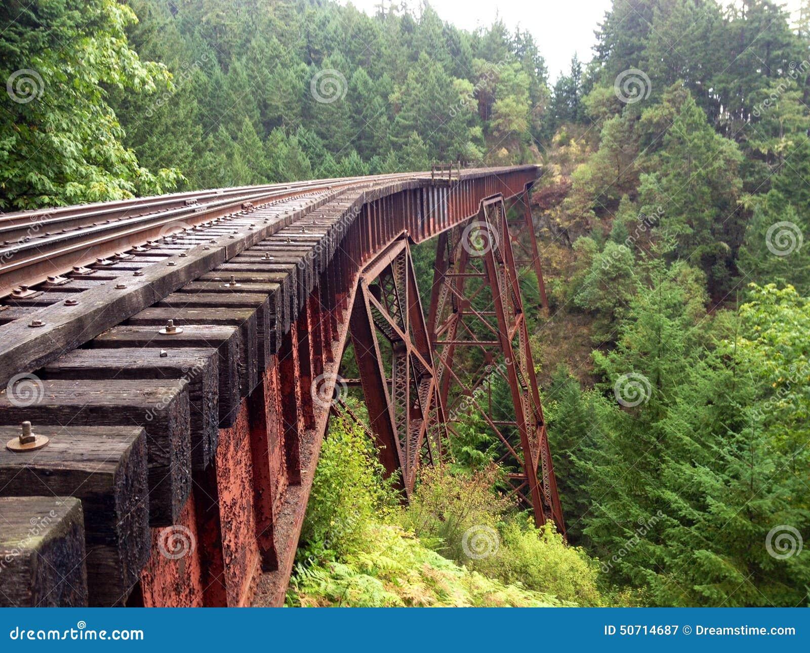 Train Track Or Train Bridge Or Trestle In The Forest Stock Photo ...