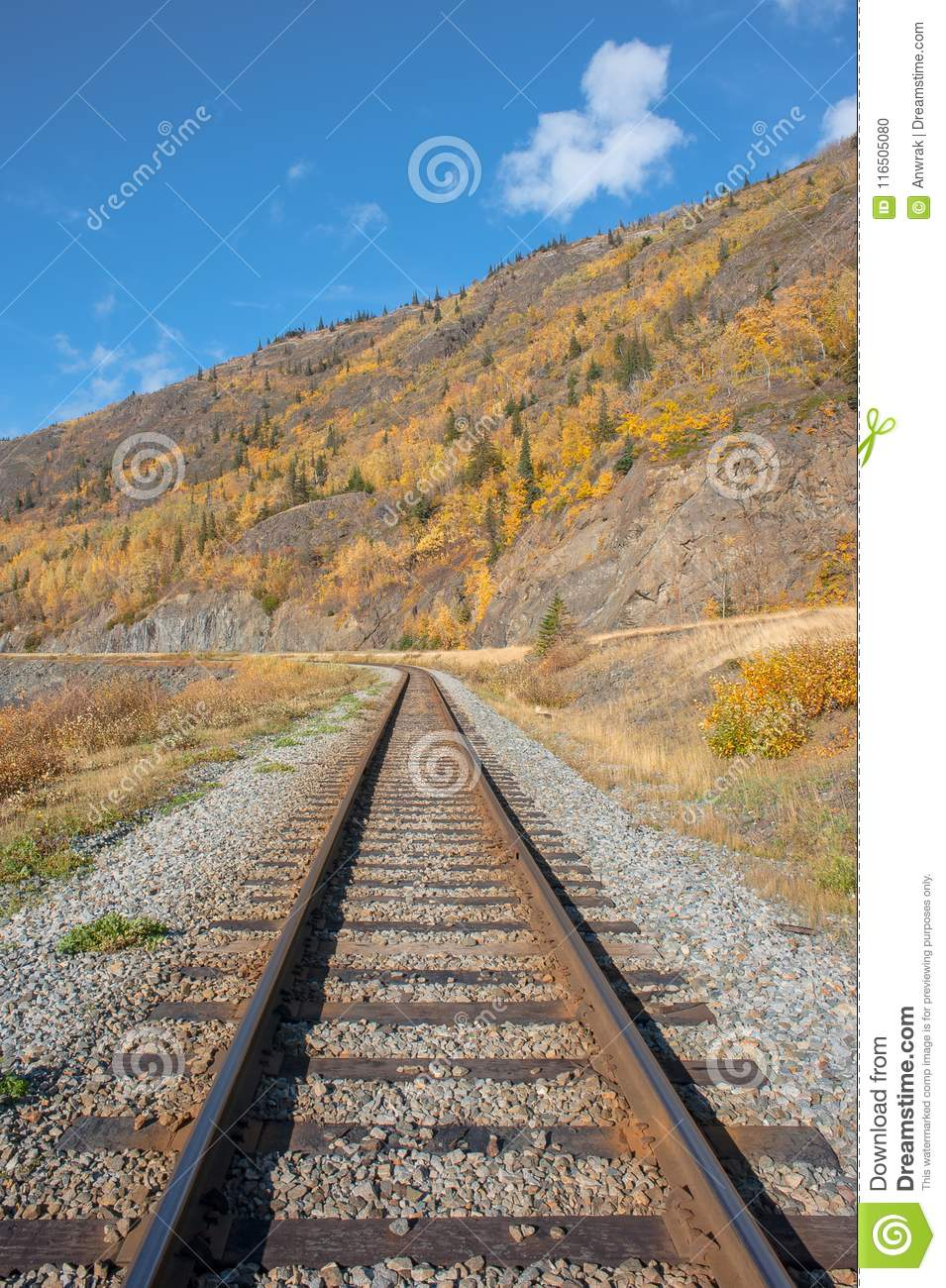 Train tracks and fall colors
