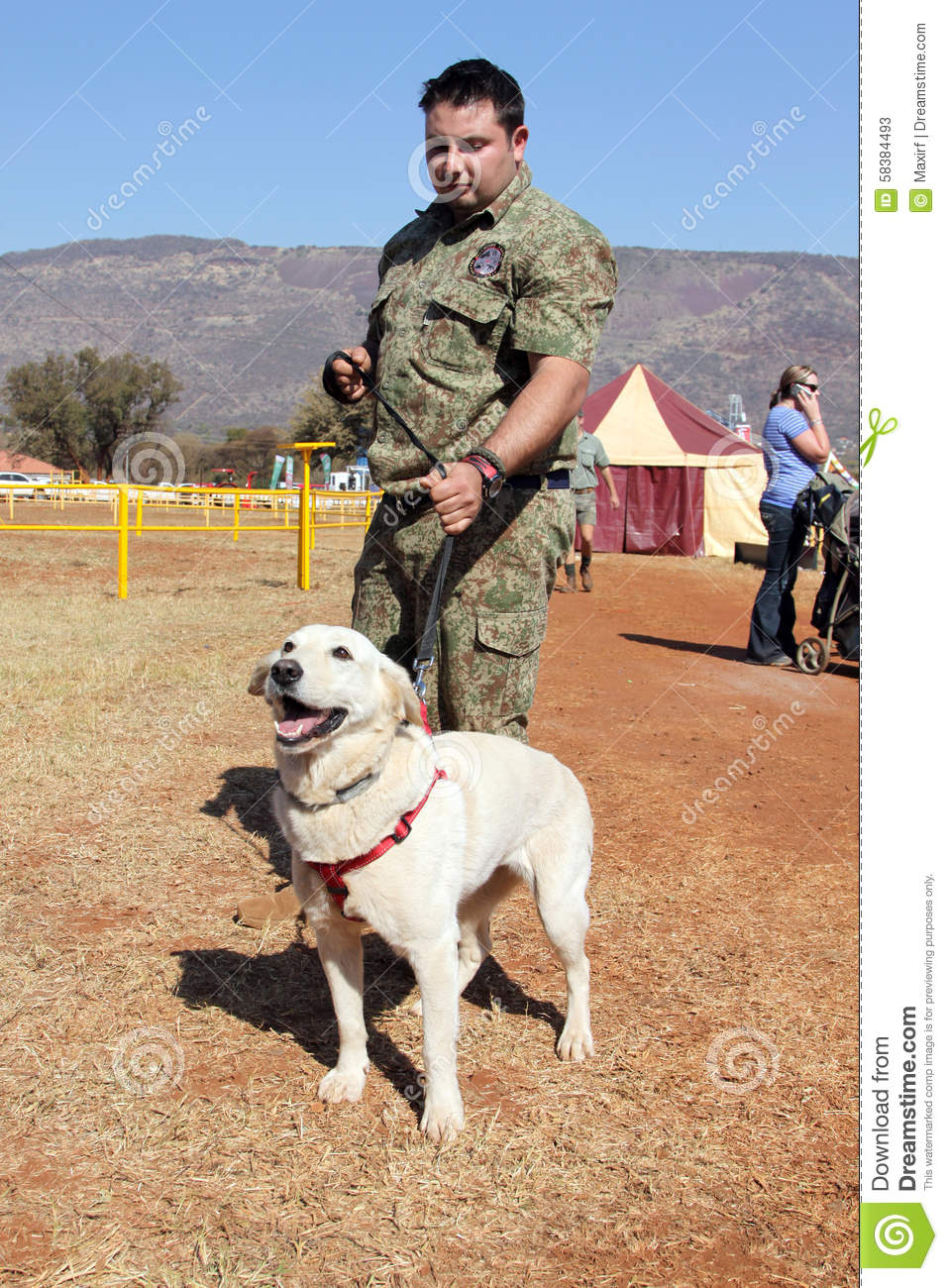 Thabazimbi South Africa  city photo : THABAZIMBI, SOUTH AFRICA August 1: Special Trained Dog show at ...
