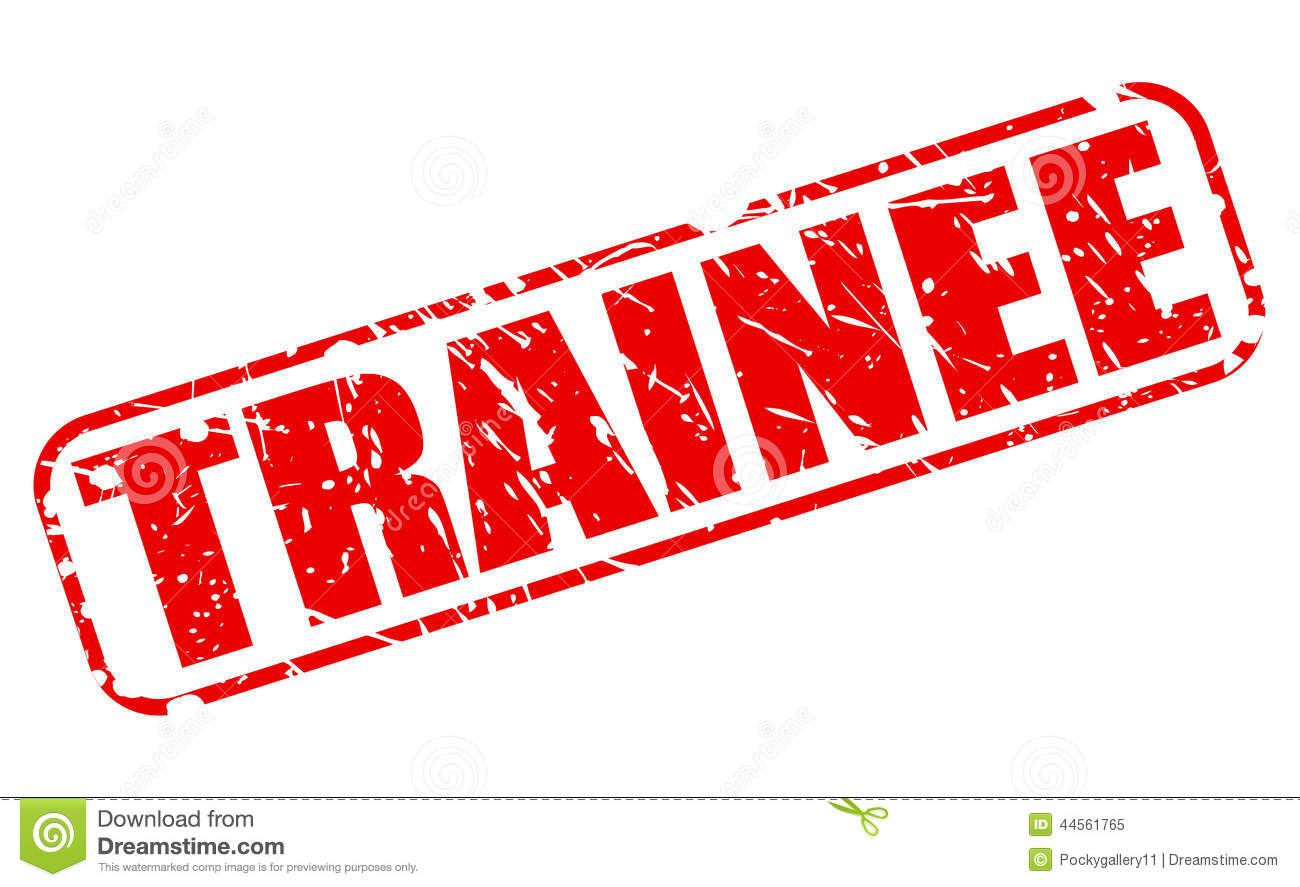 Trainee Red Stamp Text Stock Vector Image 44561765