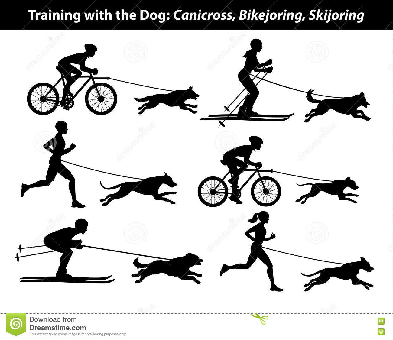 Training Exercising With Dog: Canicross, Bikejoring ...