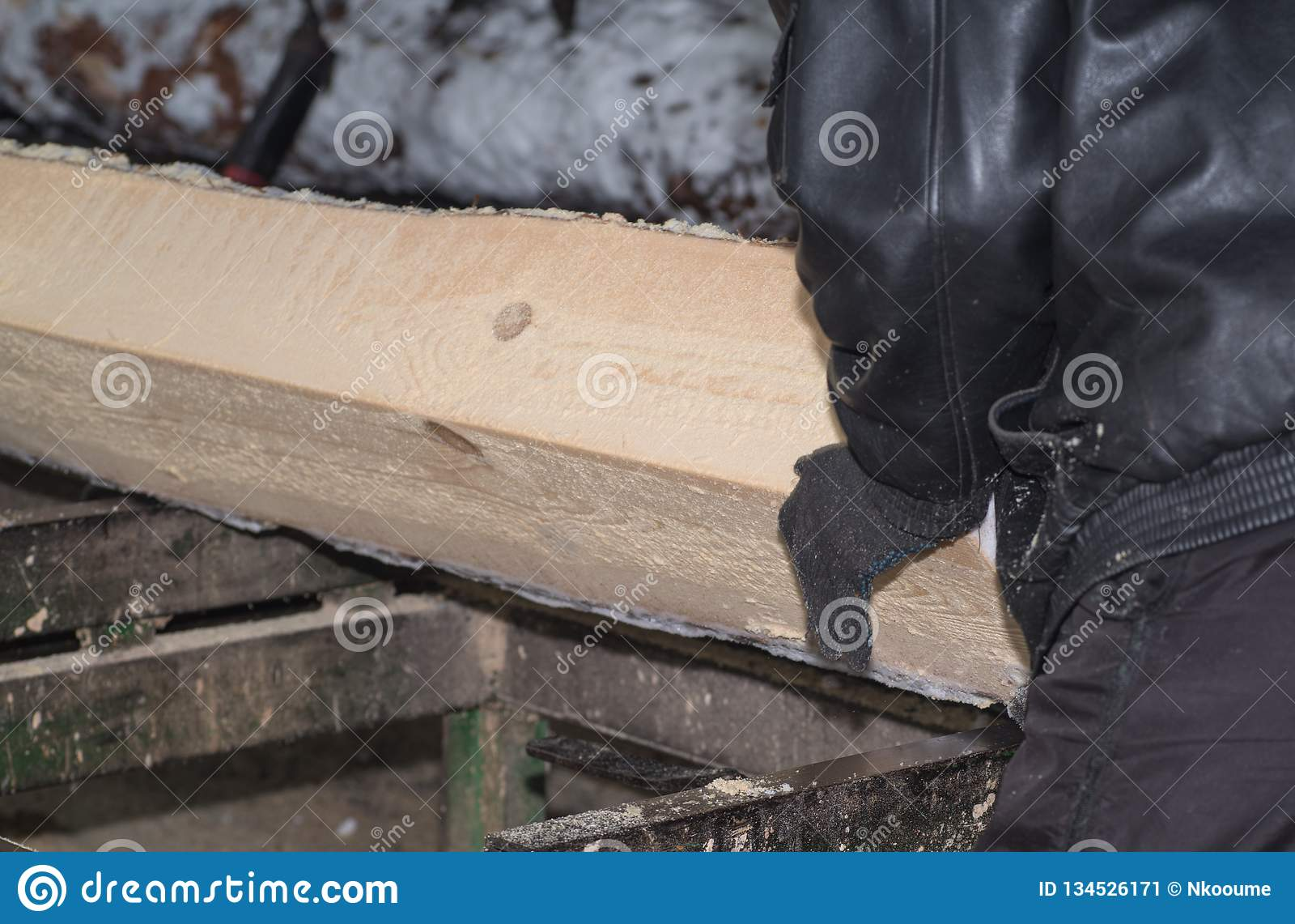 Traitement de bois La coupe ouvre une session les conseils Dans le processus d hiver un arbre