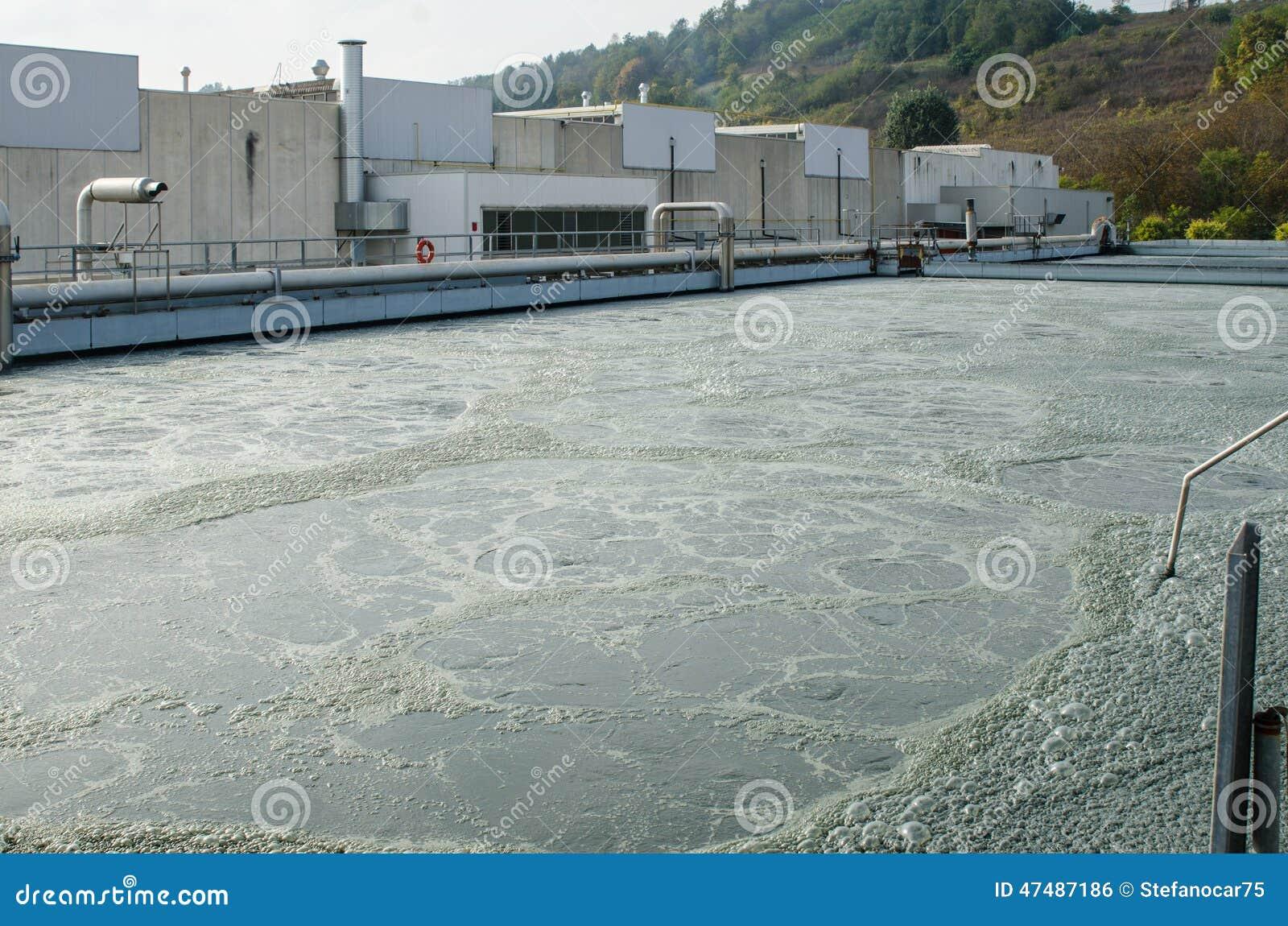 Traitement des eaux usées avec la boue biologique