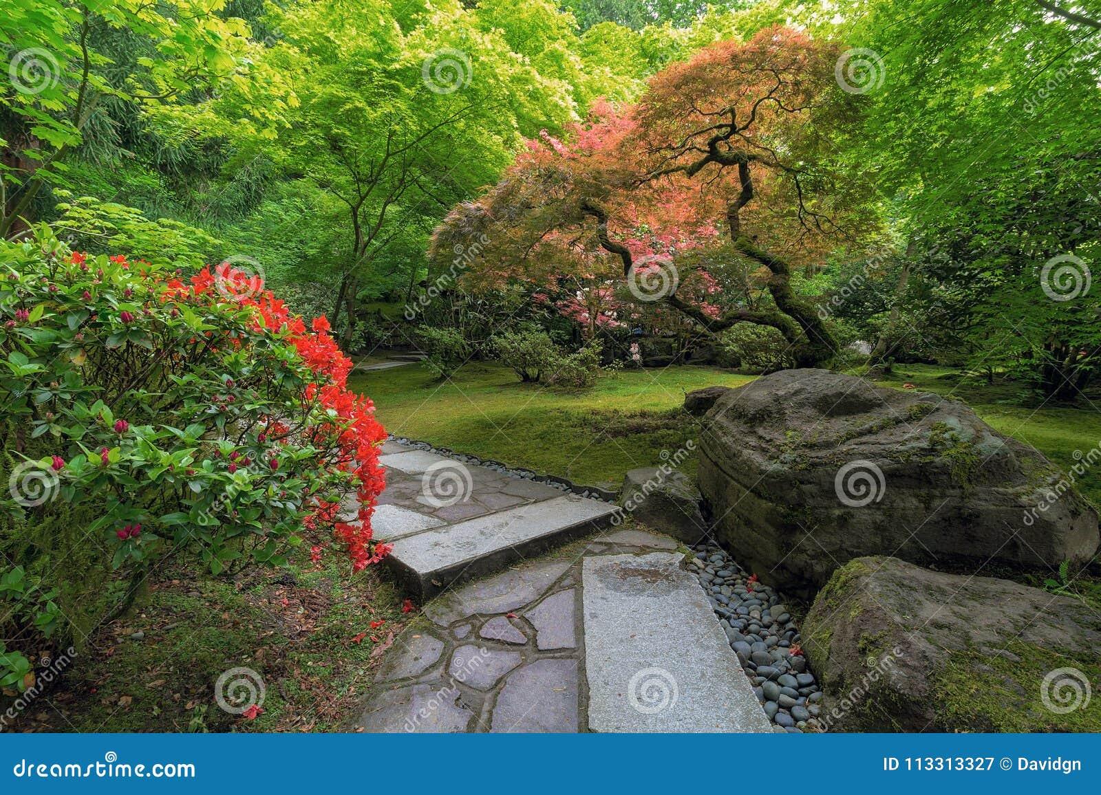 Trajeto de pedra dando uma volta do jardim japonês com plantas e as árvores manicured