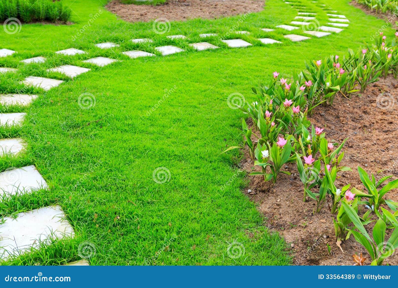 pedras para jardim em sorocaba:Trajeto De Pedra Do Pé Do Jardim Com Grama Imagens de Stock Royalty