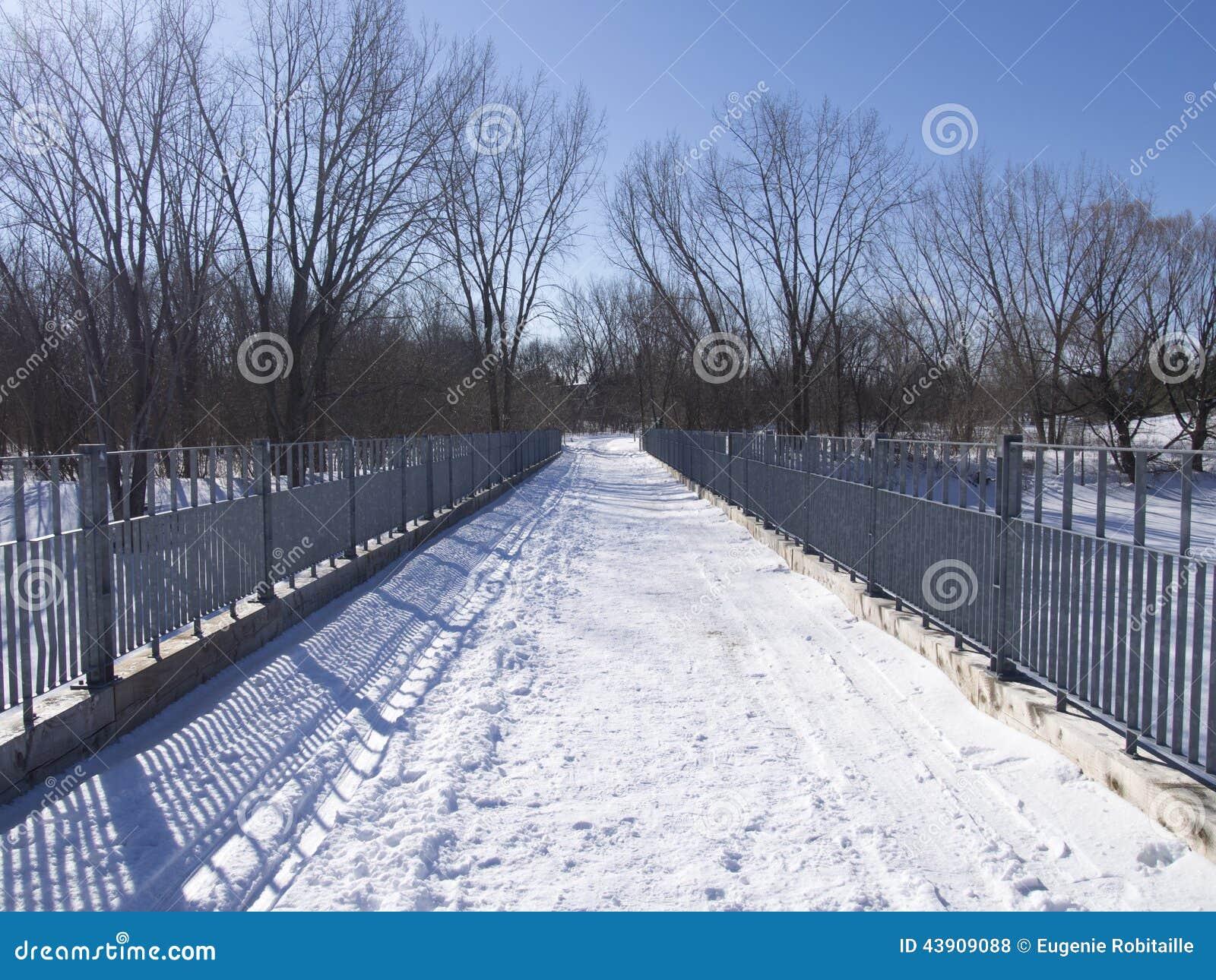 Trajeto do esqui no inverno em um parque