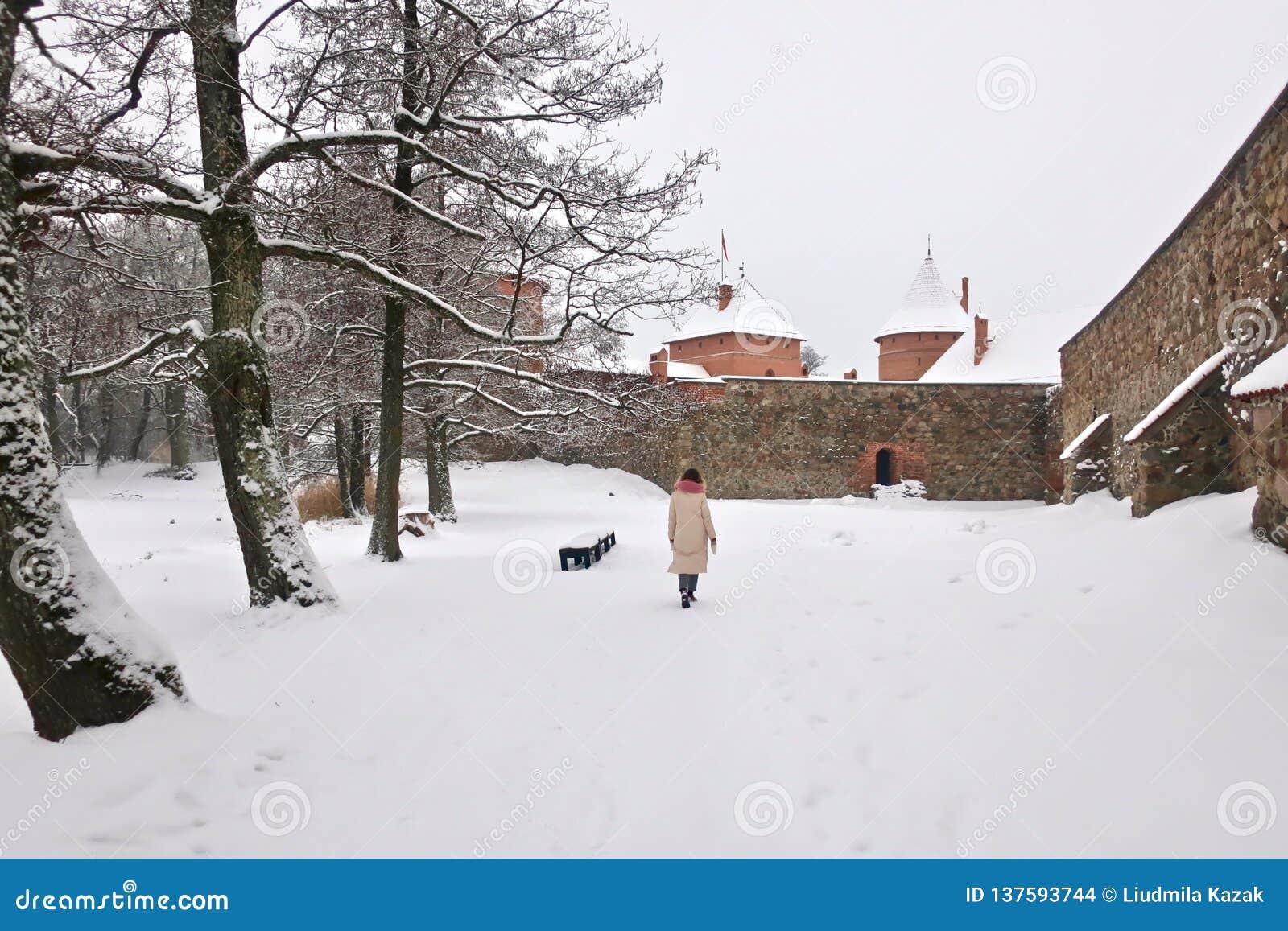 Trakaikasteel in Litouwen in de winter