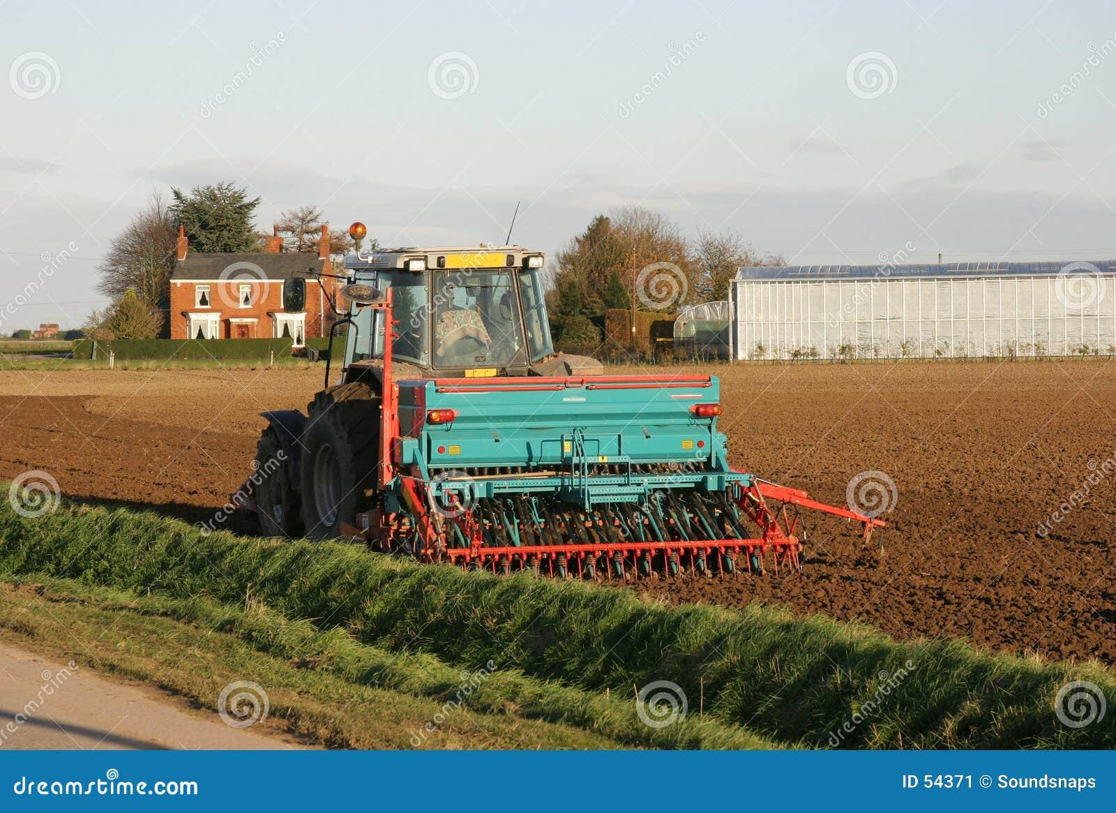 Traktor-pflügendes Bauernhof-Feld