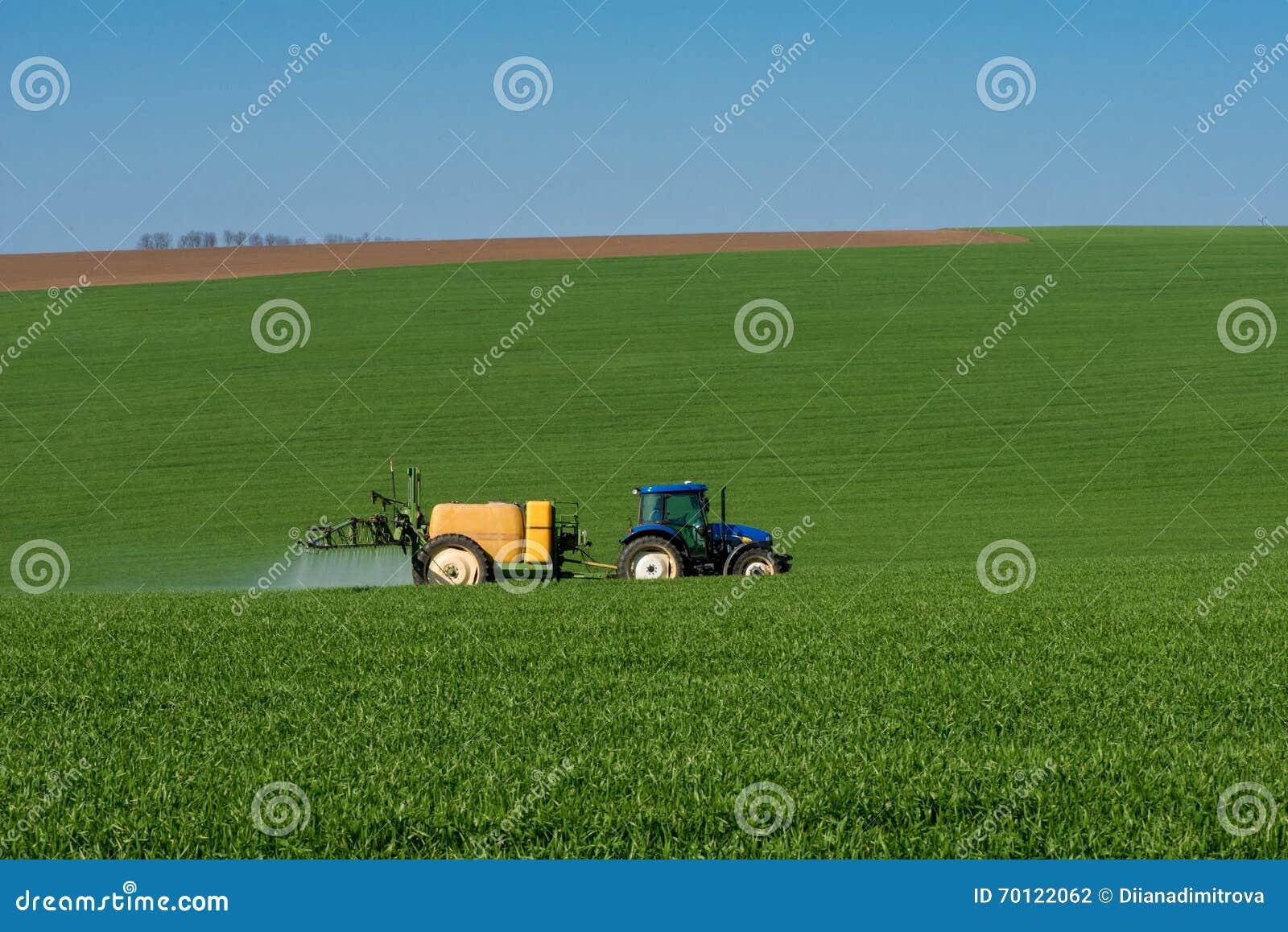 Traktor som besprutar bekämpningsmedlet i en veteåker