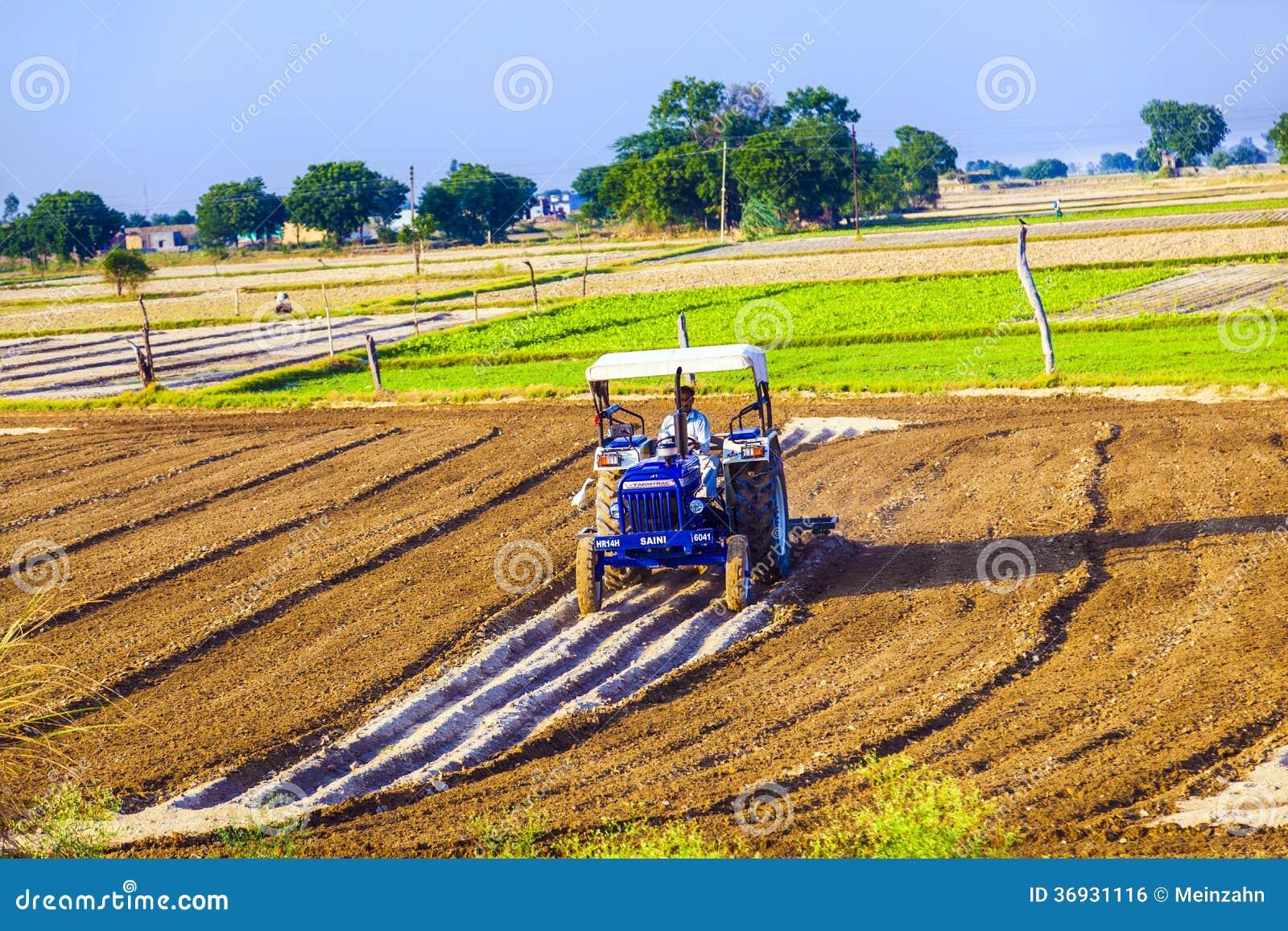 Traktoren plogar fältet
