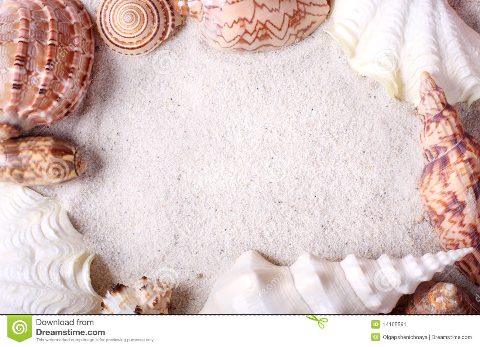 Trame de Seashells