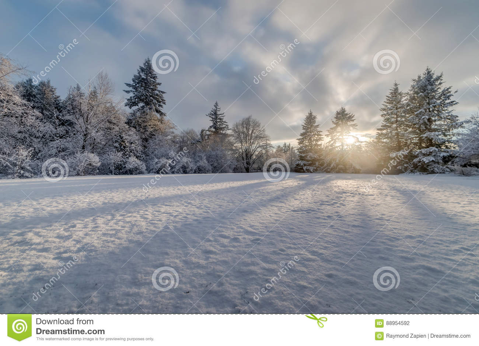 Tramonto del campo di neve