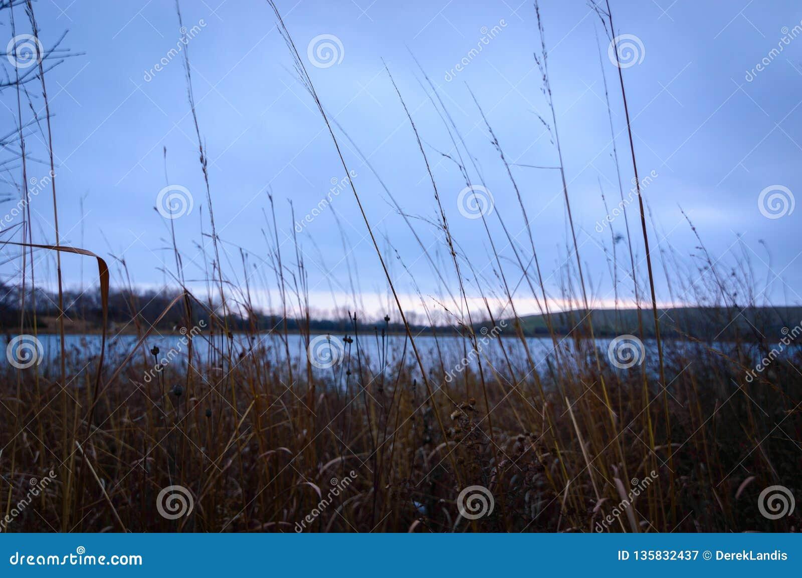 Tramonto del lago foreground dell Alto-erba con le nuvole