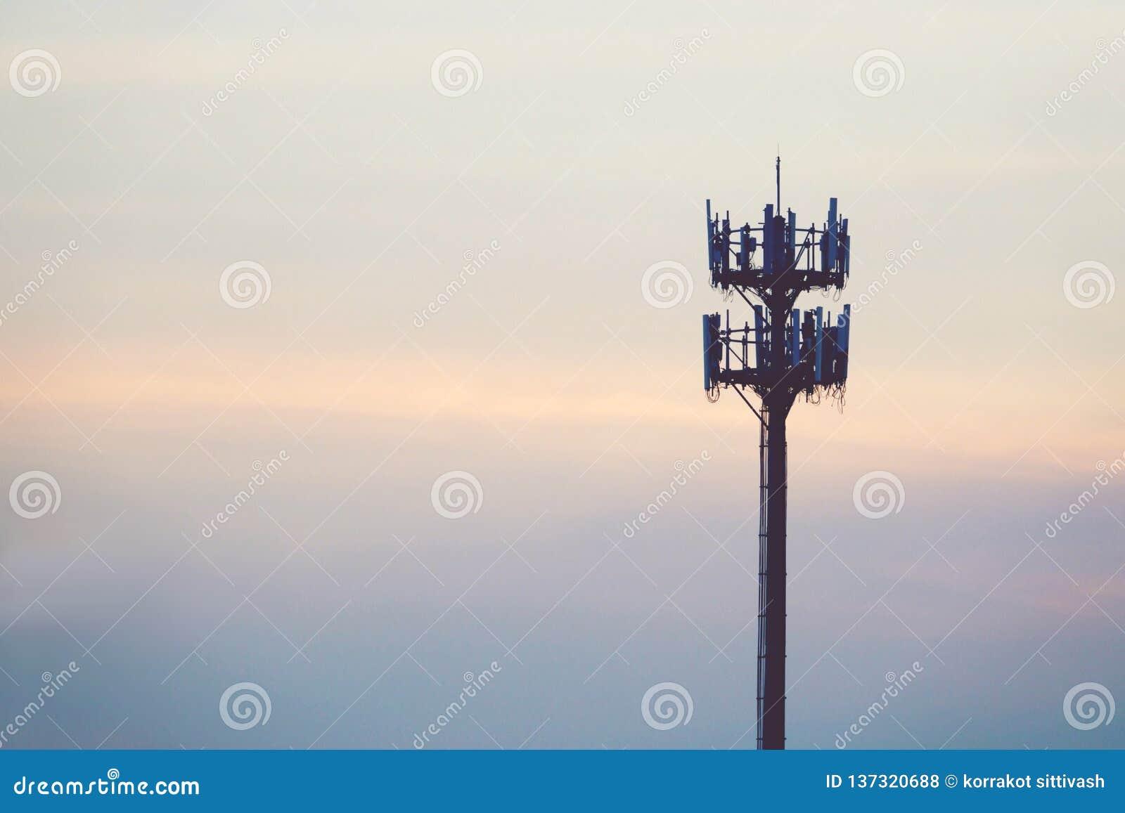 Tramonto ed albero alto con l antenna cellulare